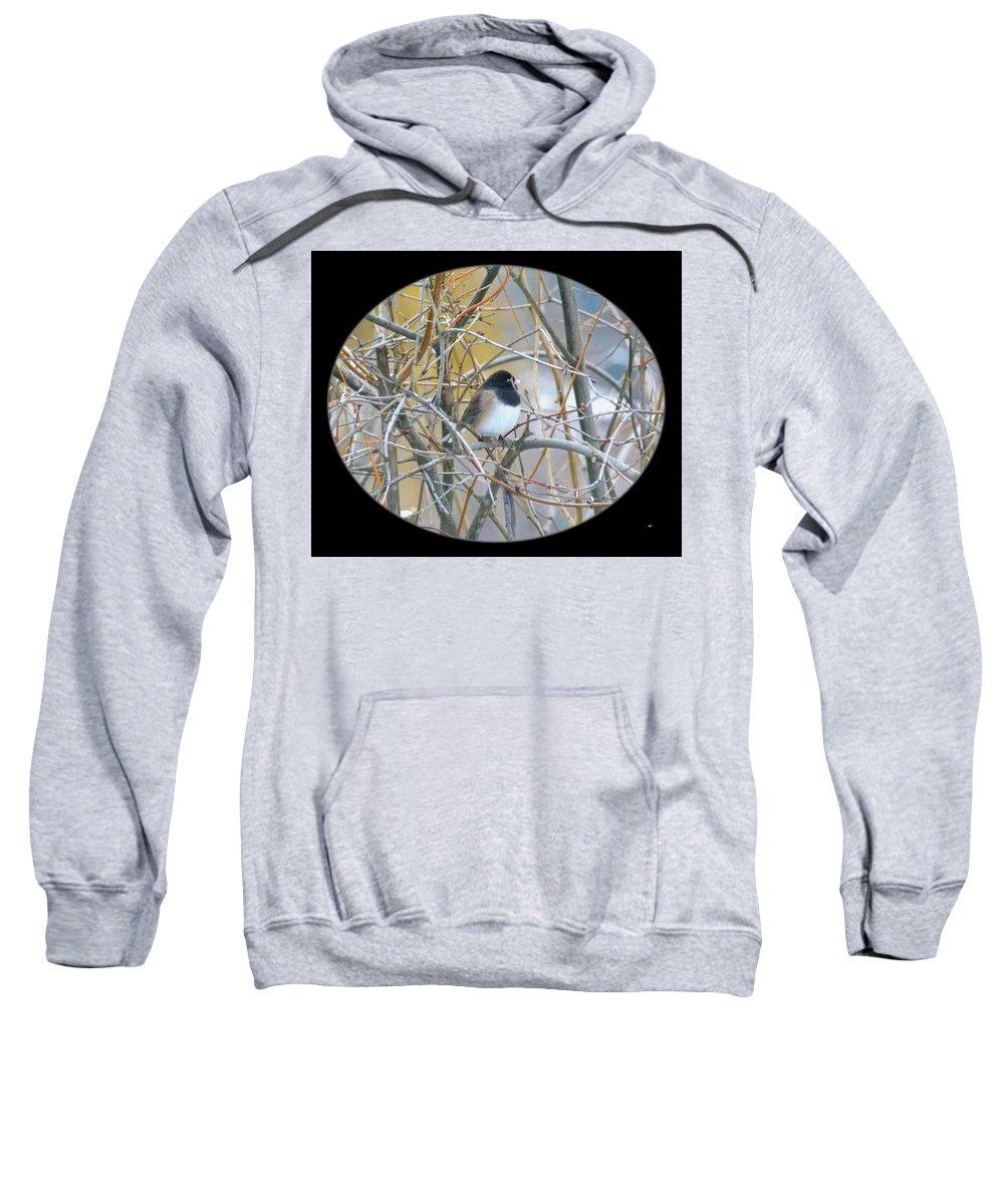 Dark-eyed Junco Sweatshirt featuring the photograph Dark- Eyed Junco by Will Borden