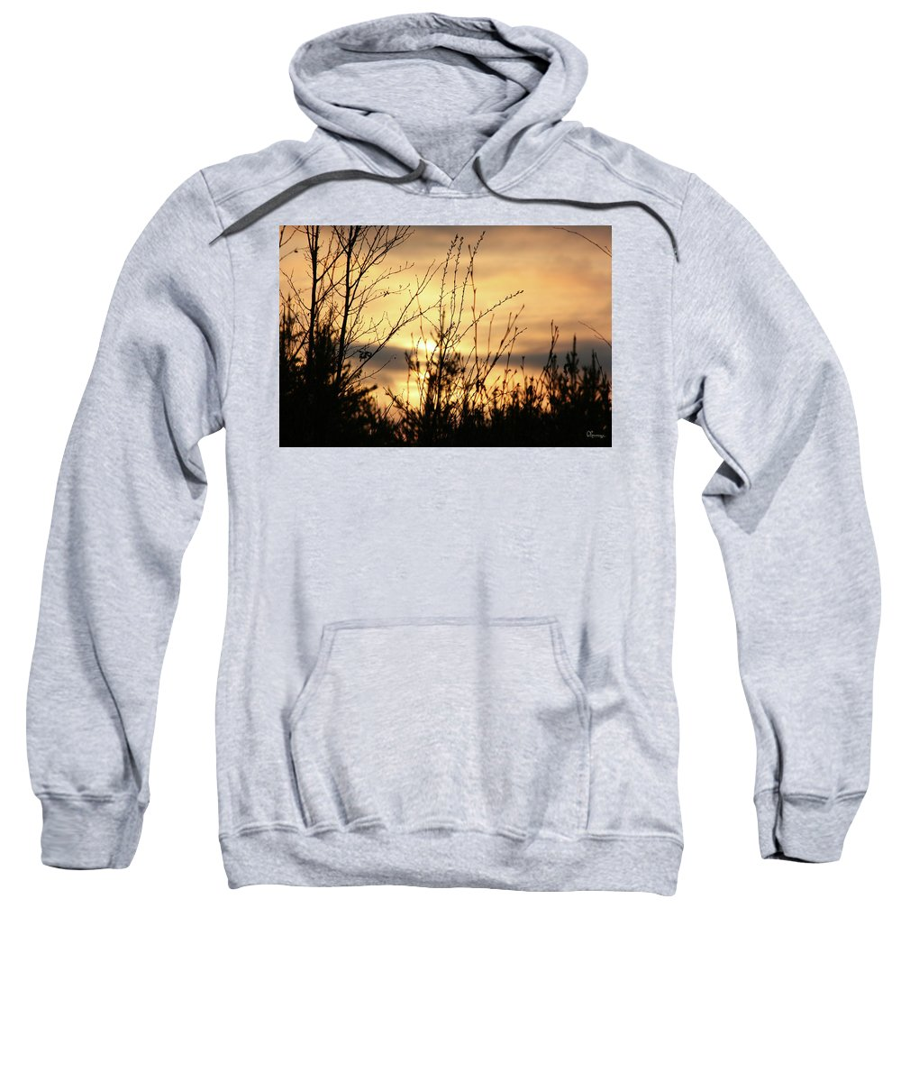 Piprell Lake Setting Sun Saskatchewan Wilderness Forest Sweatshirt featuring the photograph Dark Soon by Andrea Lawrence