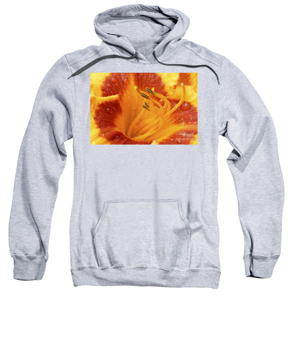 Day Lily Sweatshirt featuring the photograph Day Lily In The Rain - 688 by Paul W Faust - Impressions of Light