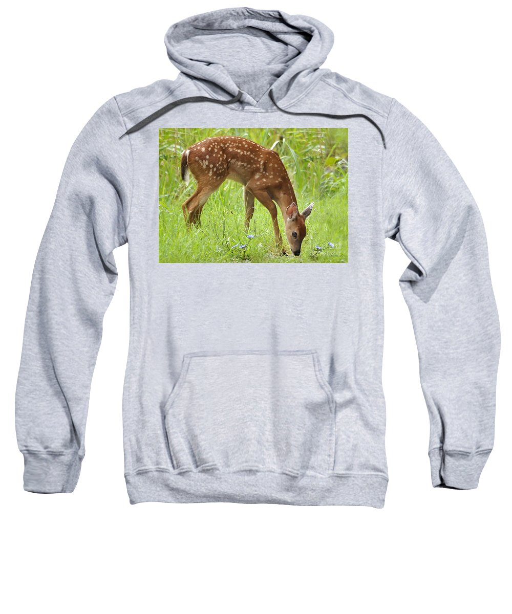 Nature Sweatshirt featuring the photograph Little Fawn Blue Wildflowers by Nava Thompson