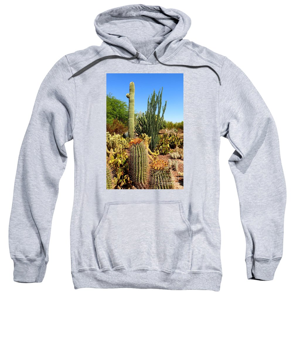 Cactus Sweatshirt featuring the photograph Desert Cacti by Christiane Schulze Art And Photography
