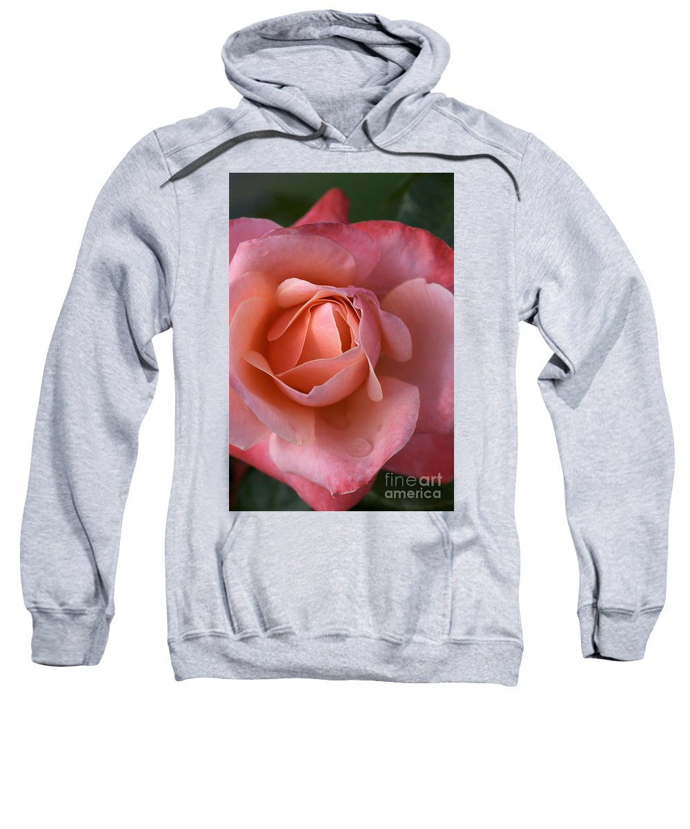 Rose Sweatshirt featuring the photograph Dew Drops On My Petals by Joy Watson