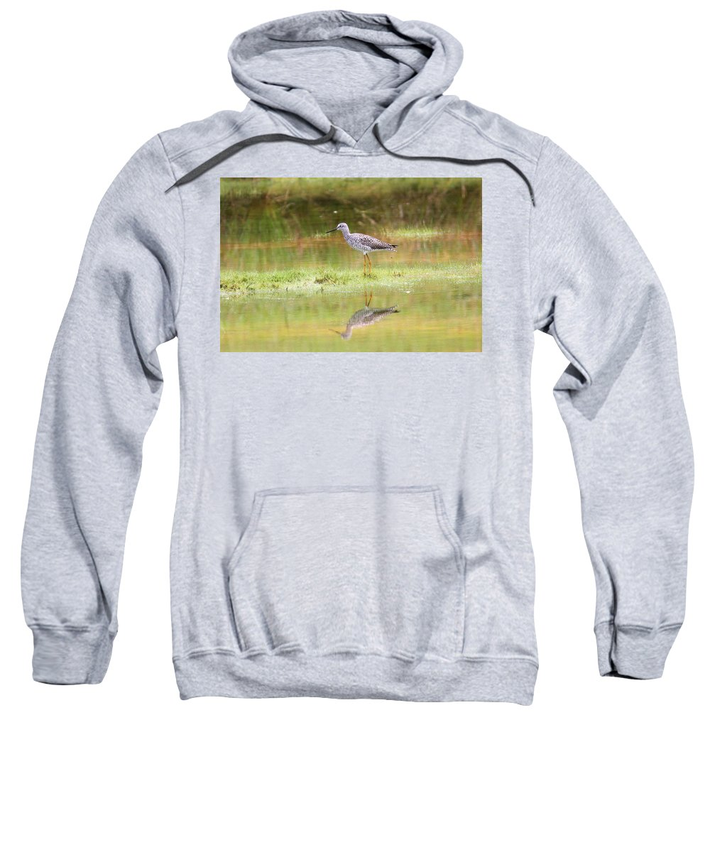 Greater Yellowlegs Sweatshirt featuring the photograph Dew On The Grass by Travis Truelove