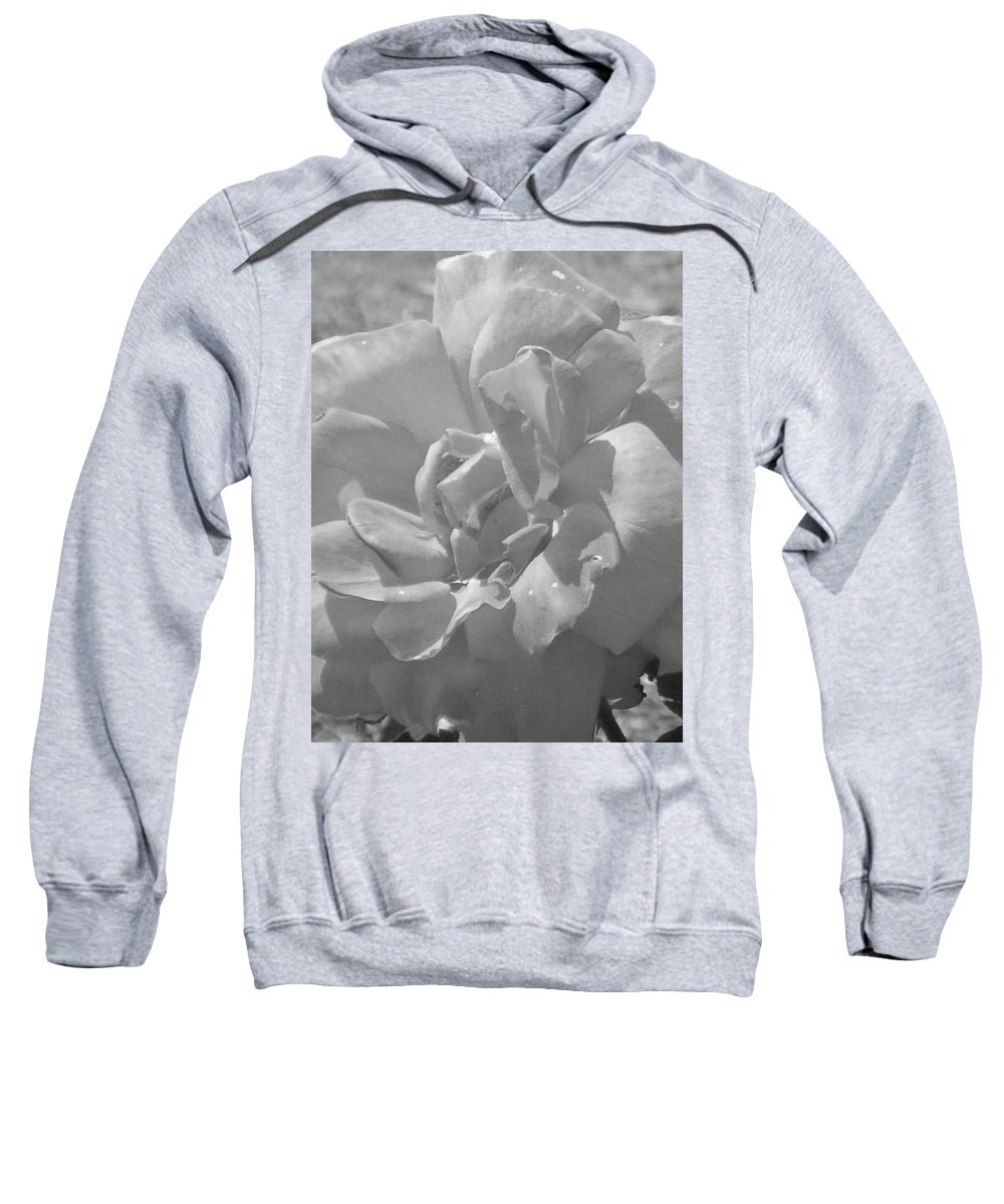 Rose Sweatshirt featuring the photograph Dew Rose by Pharris Art
