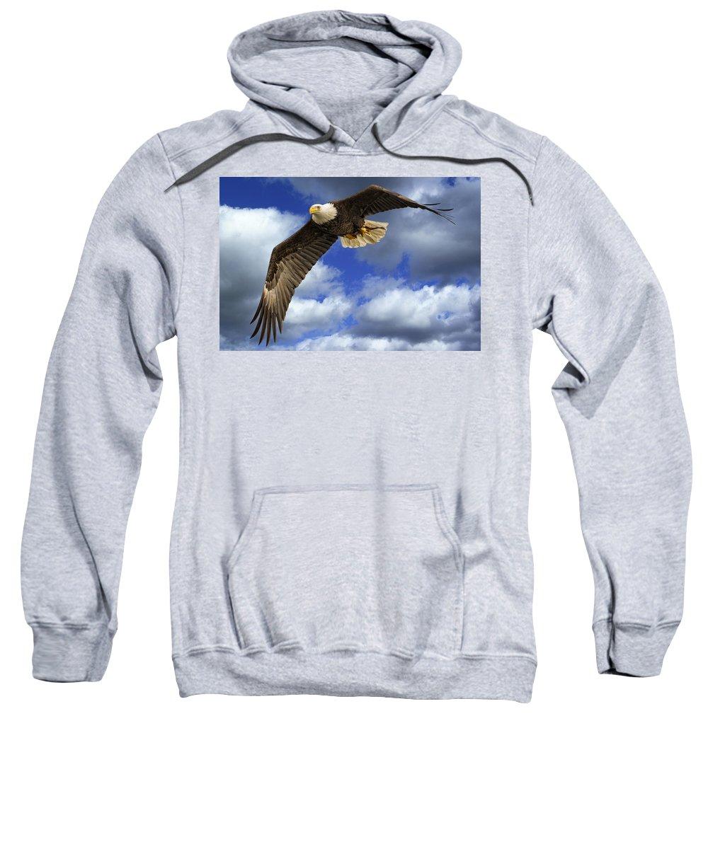 Alaska Sweatshirt featuring the photograph Dinner Flight by Jack R Perry