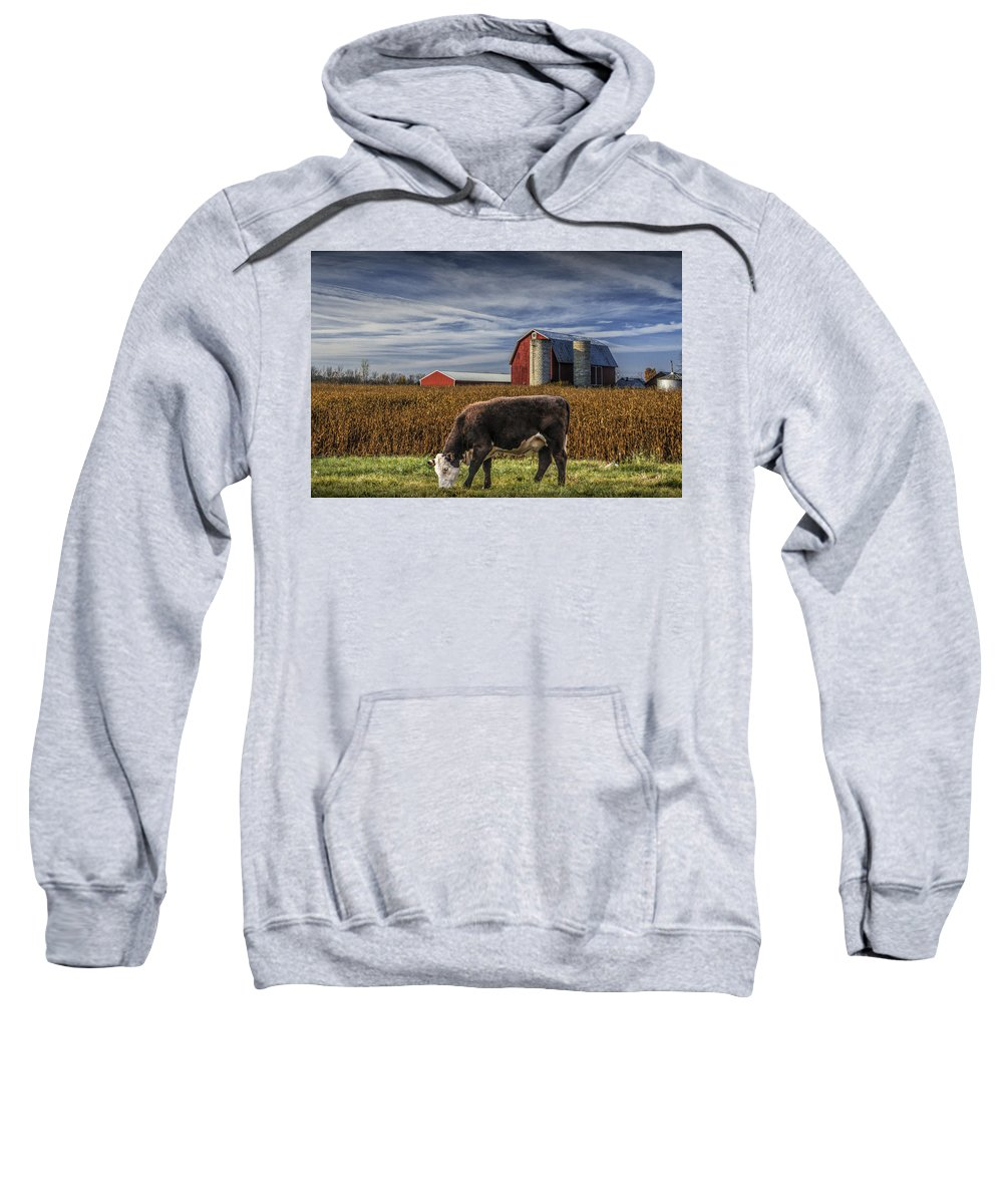 Art Sweatshirt featuring the photograph Down On The Farm by Randall Nyhof