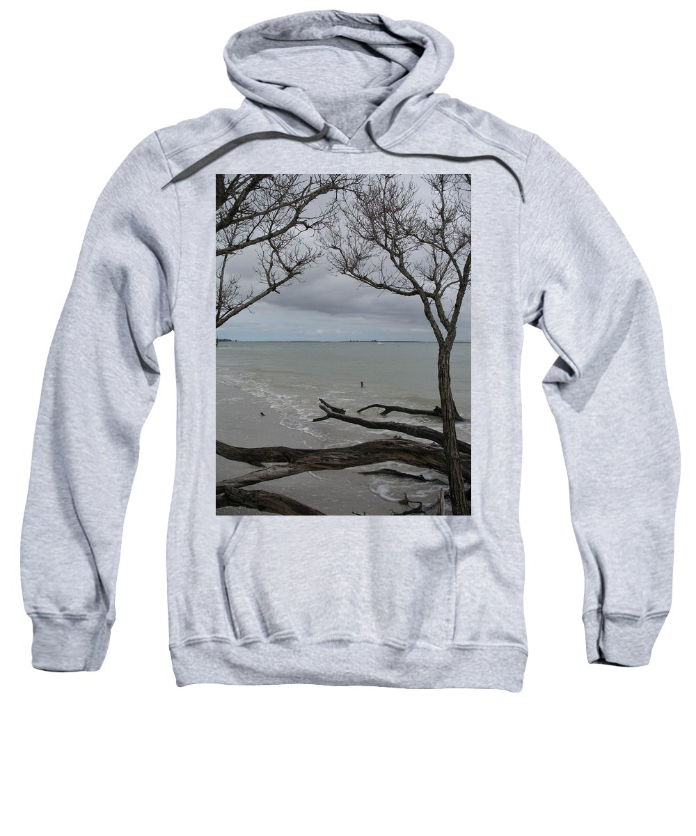 Beach Sweatshirt featuring the photograph Driftwood On The Beach by Christiane Schulze Art And Photography
