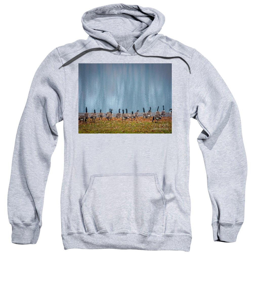 Providence Sweatshirt featuring the photograph Duck Reflections by DAC Photography