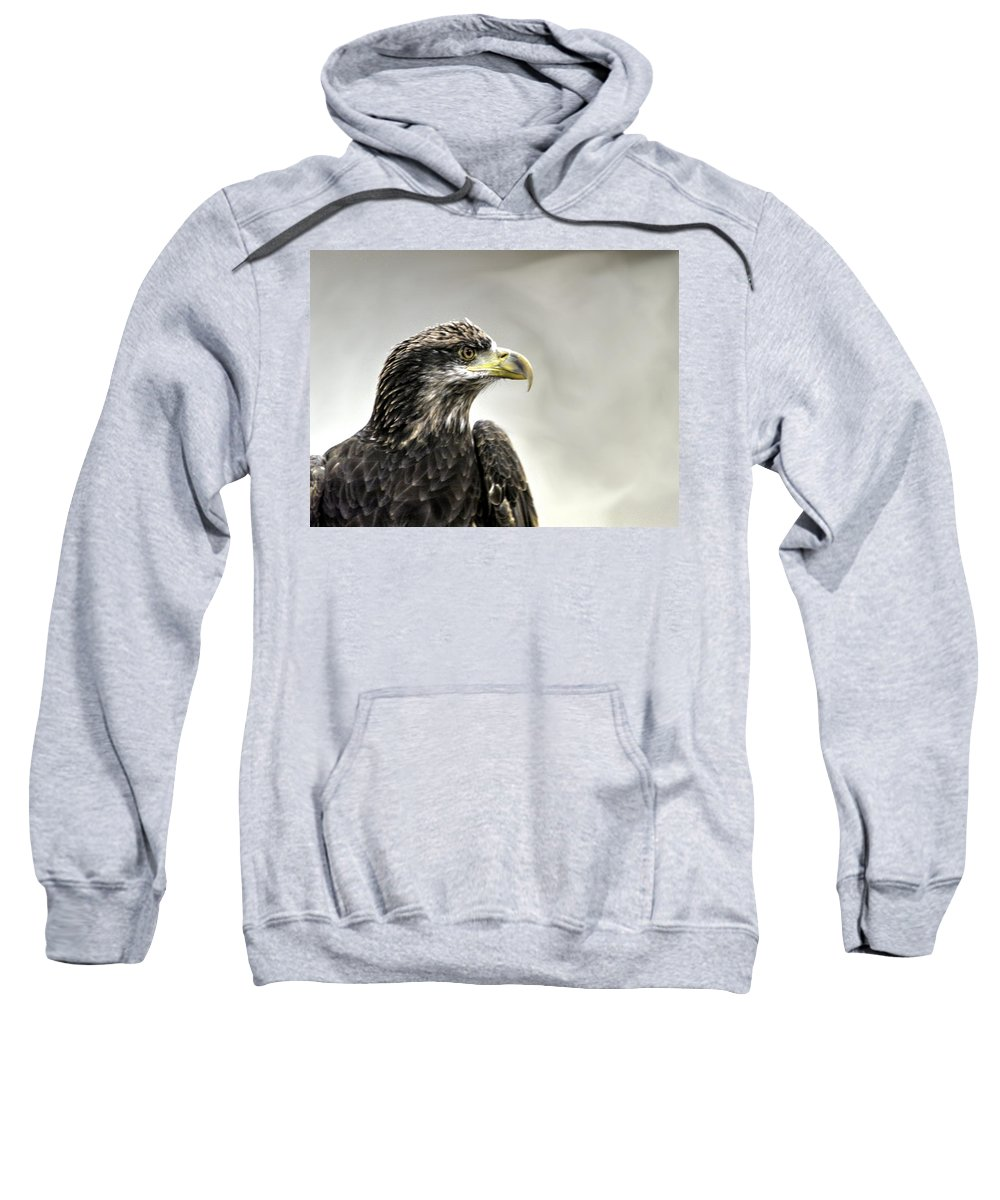 Eagle Sweatshirt featuring the photograph Eagle In The Mist by John Straton