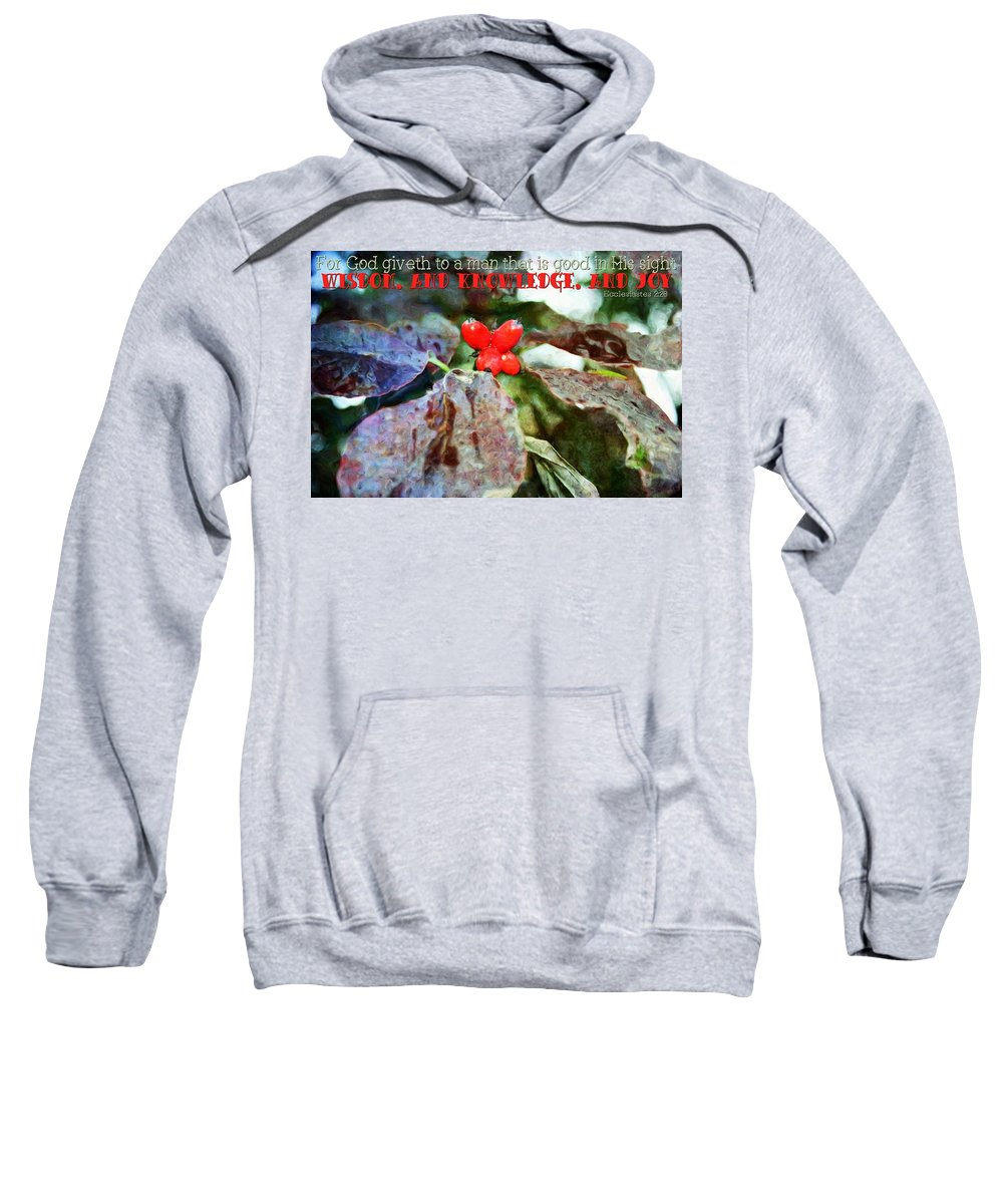 Jesus Sweatshirt featuring the digital art Ecclesiastes 2 26 by Michelle Greene Wheeler