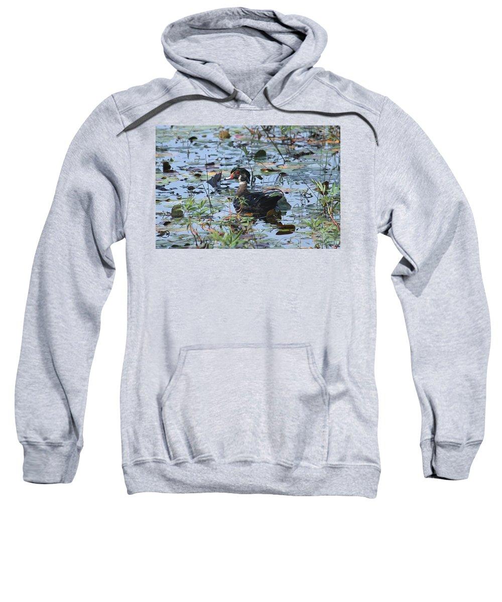 Male Wood Duck Sweatshirt featuring the photograph Eclipsing Season by Teresa McGill