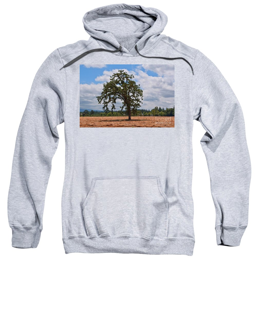 Agriculture Sweatshirt featuring the photograph Elm Tree In Hay Field Art Prints by Valerie Garner