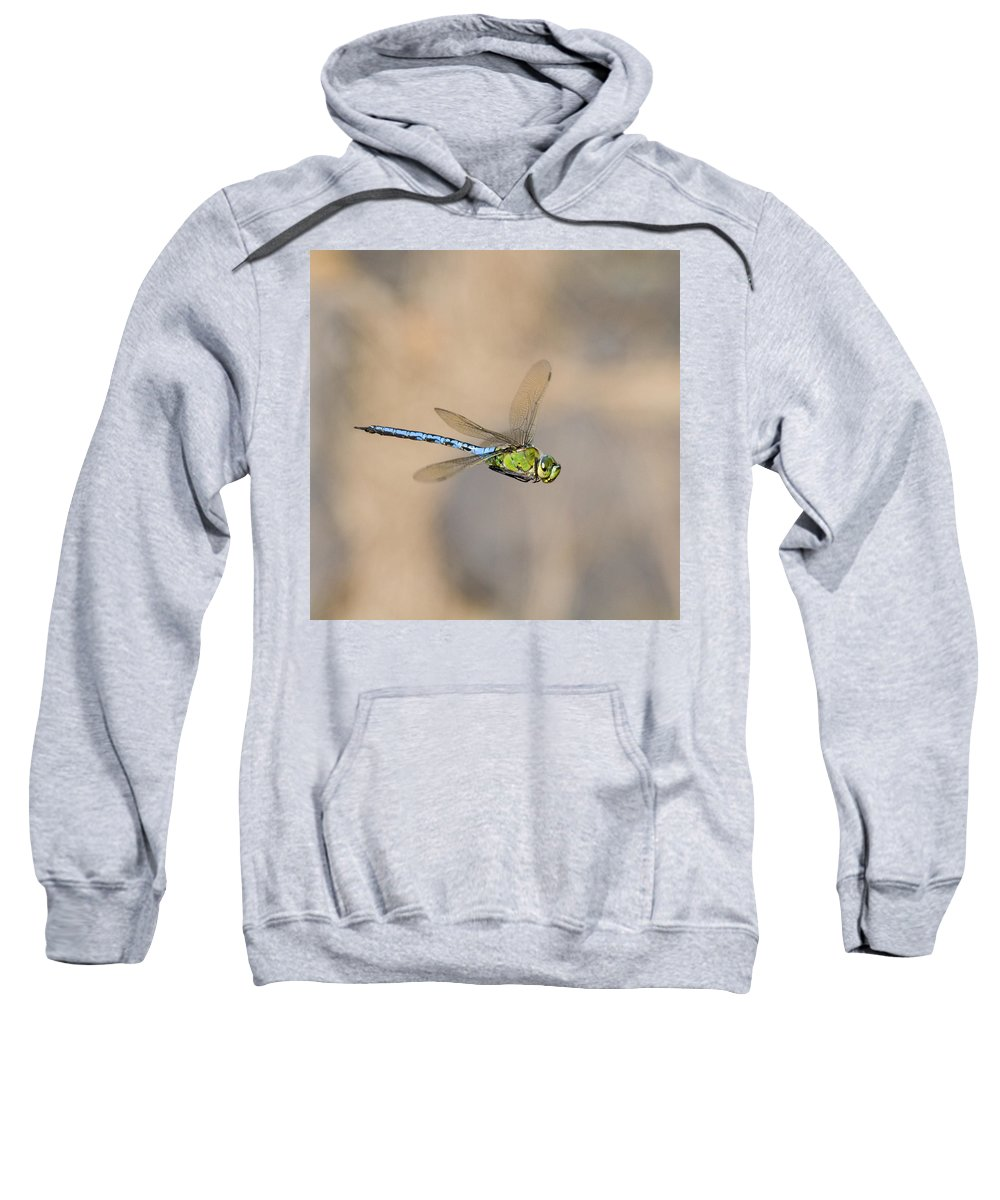 Emperor Dragonfly Sweatshirt featuring the photograph Emperor Dragonfly by Chris Smith