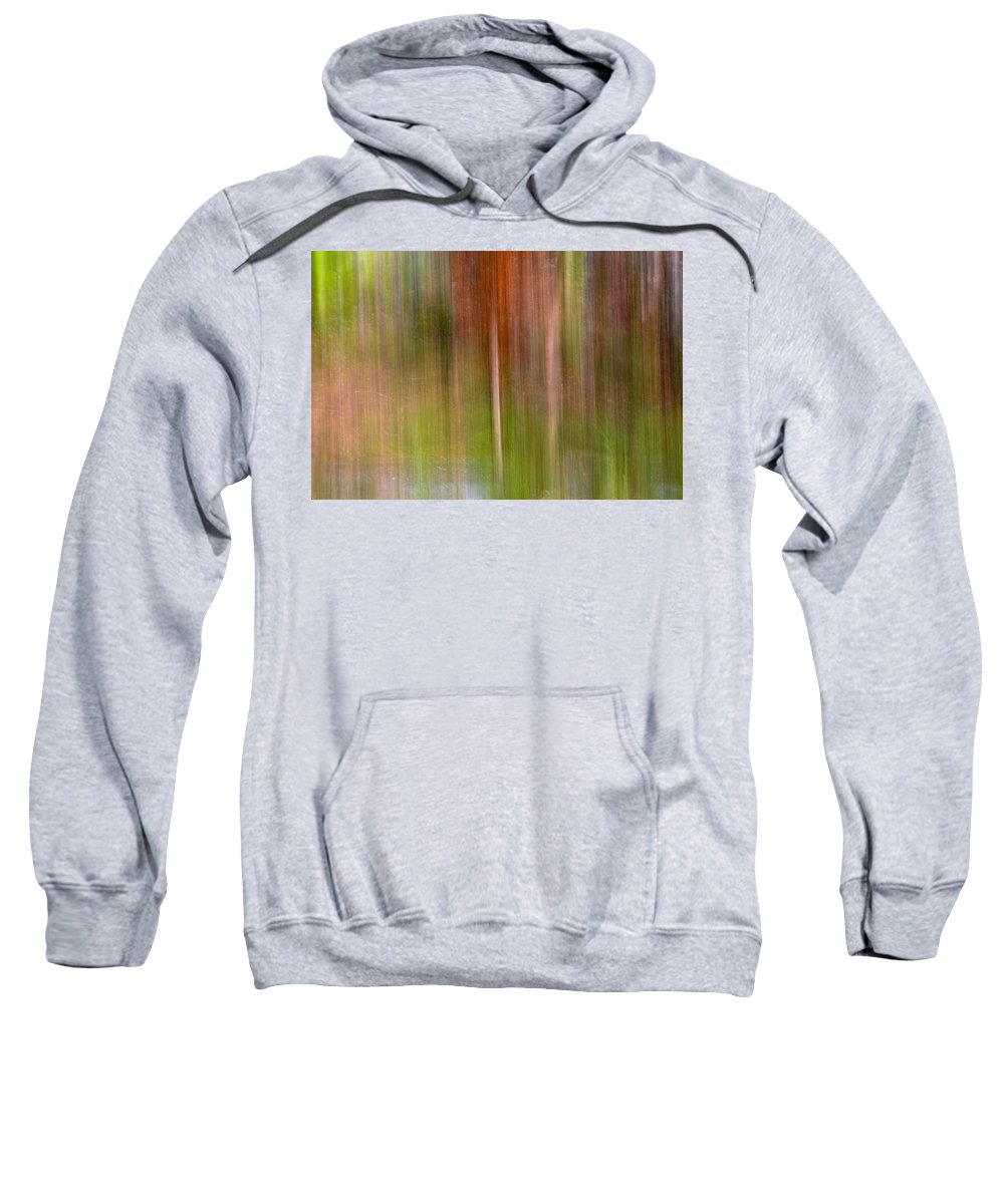 Abstracts Sweatshirt featuring the photograph Encantamiento by Guido Montanes Castillo