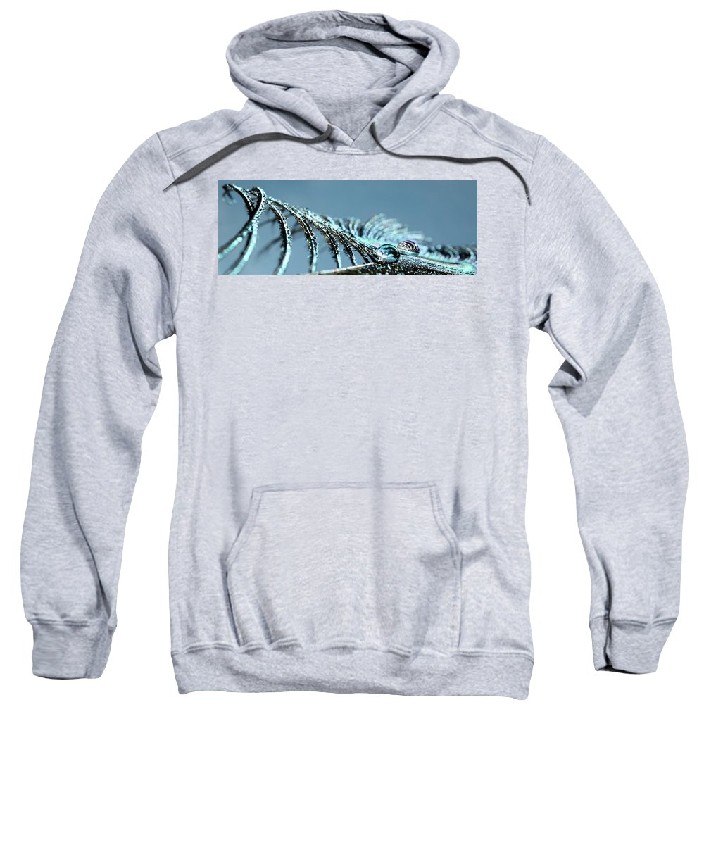 Peacock Feather Sweatshirt featuring the photograph Every Waking Moment by Krissy Katsimbras