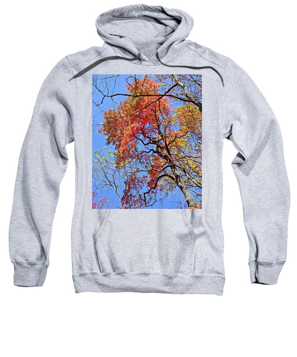 Duane Mccullough Sweatshirt featuring the photograph Fall Trees 2 Of Wnc by Duane McCullough