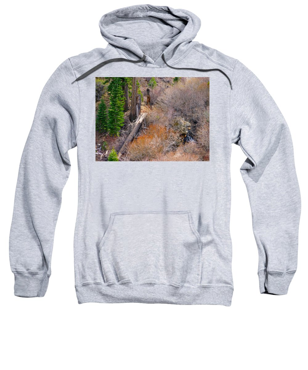 Nevada Sweatshirt featuring the photograph Fallen by Brent Dolliver