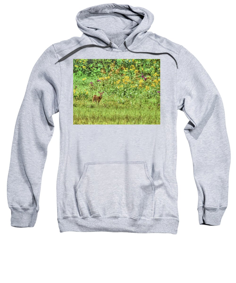 Fawn Sweatshirt featuring the photograph Fawn In Flowers by Shirley Tinkham