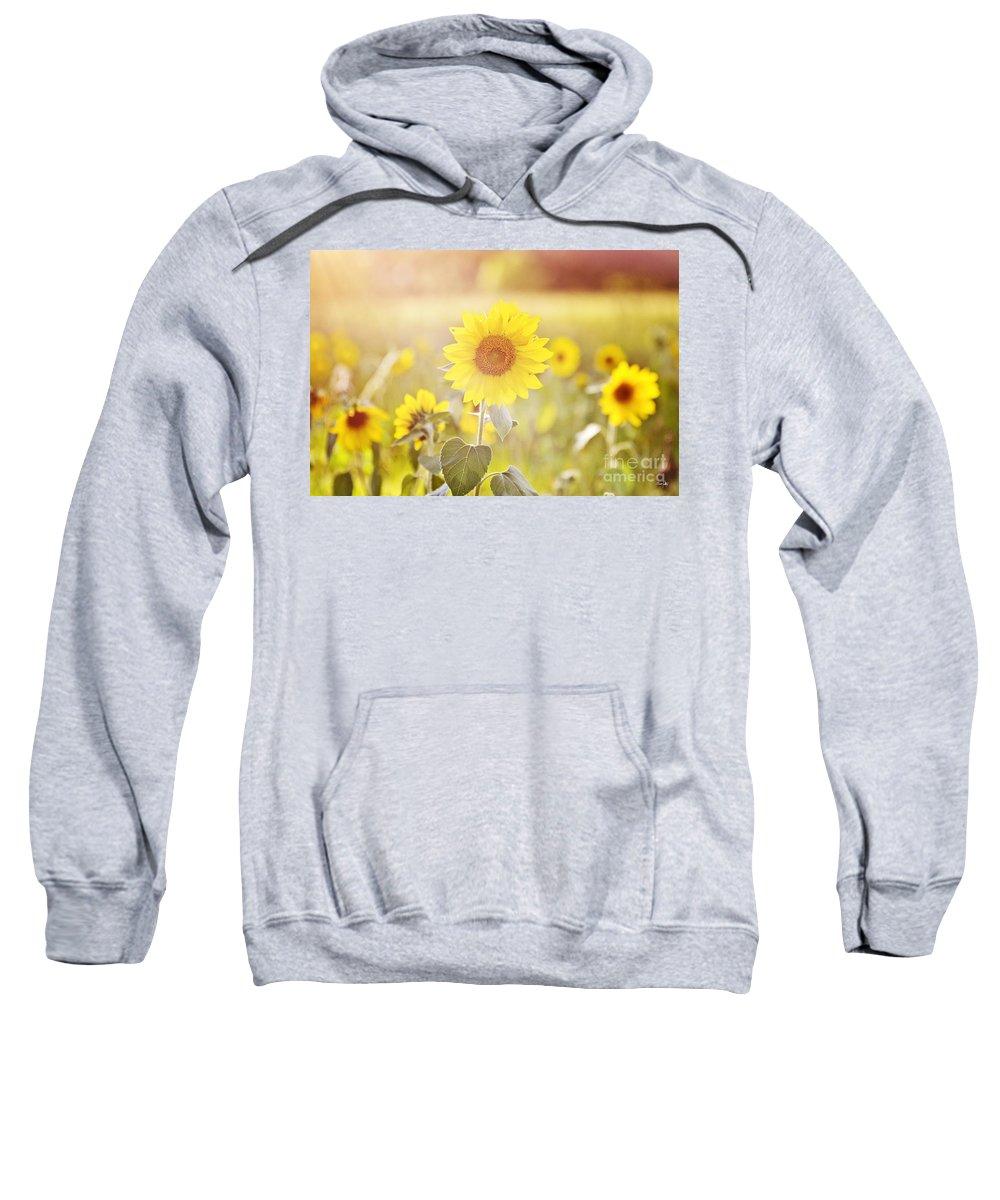 Sunflower Sweatshirt featuring the photograph Field Of Sunshine by Scott Pellegrin