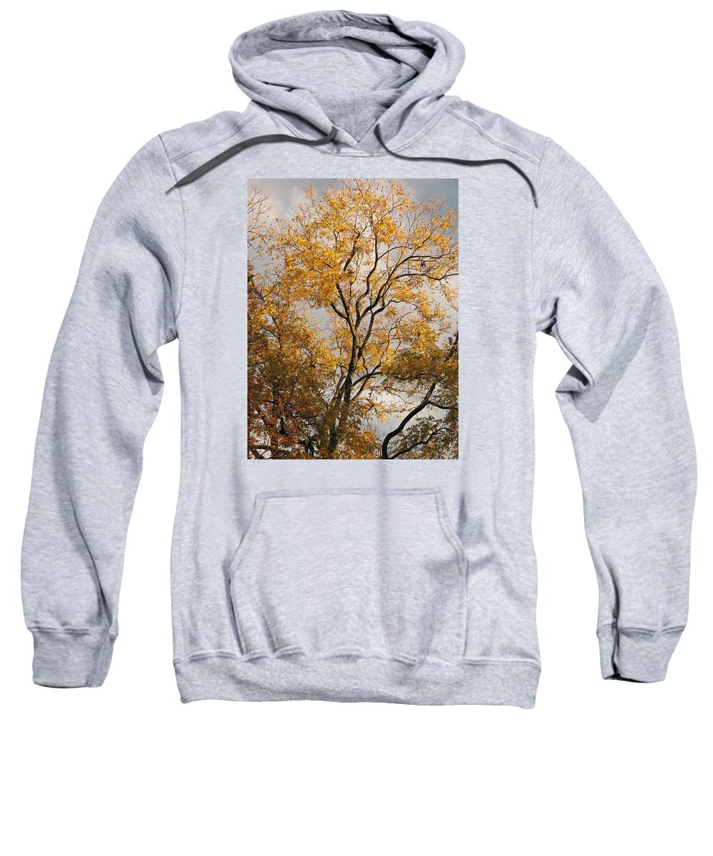 Winter Sweatshirt featuring the photograph First Day Of Winter 2 by Connie Fox