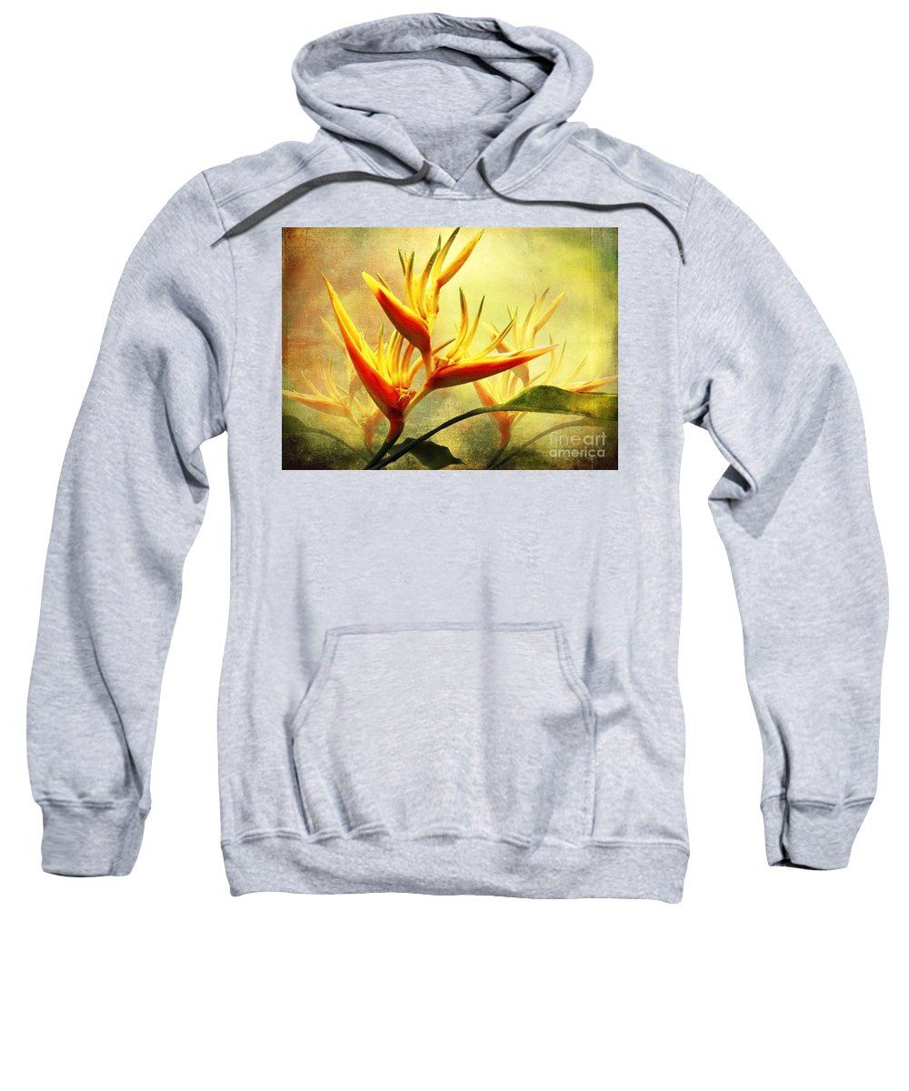 Flowers Sweatshirt featuring the photograph Flames Of Paradise by Ellen Cotton
