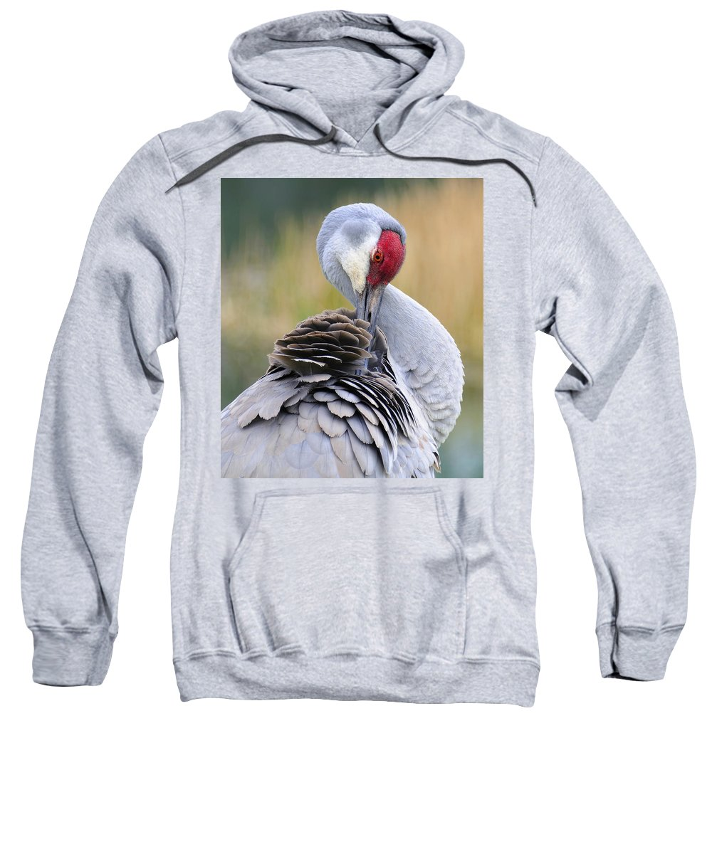 Large Bird Sweatshirt featuring the photograph Sandhill Crane by Carol Eade