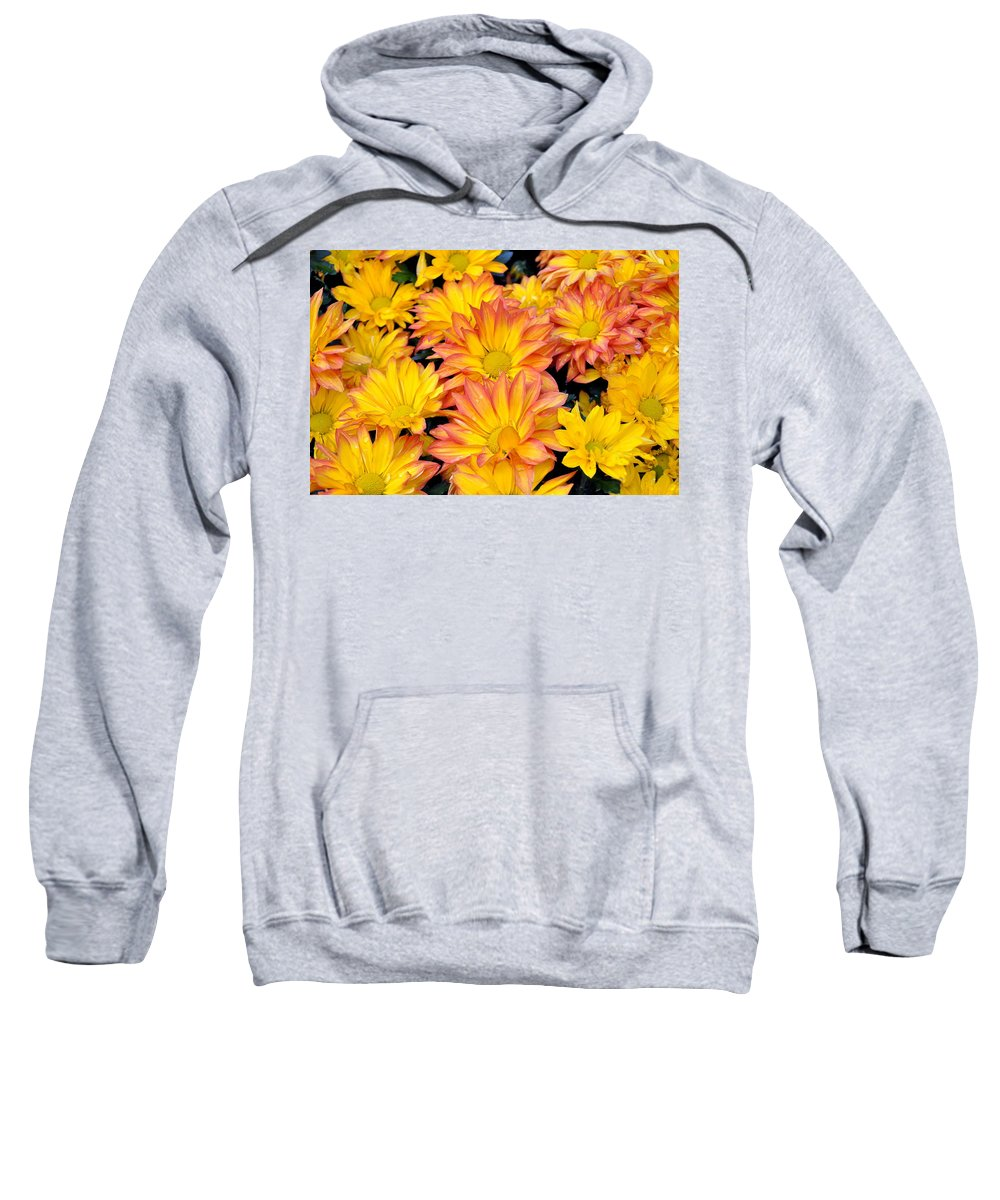 Flower Sweatshirt featuring the photograph Flower by Gandz Photography