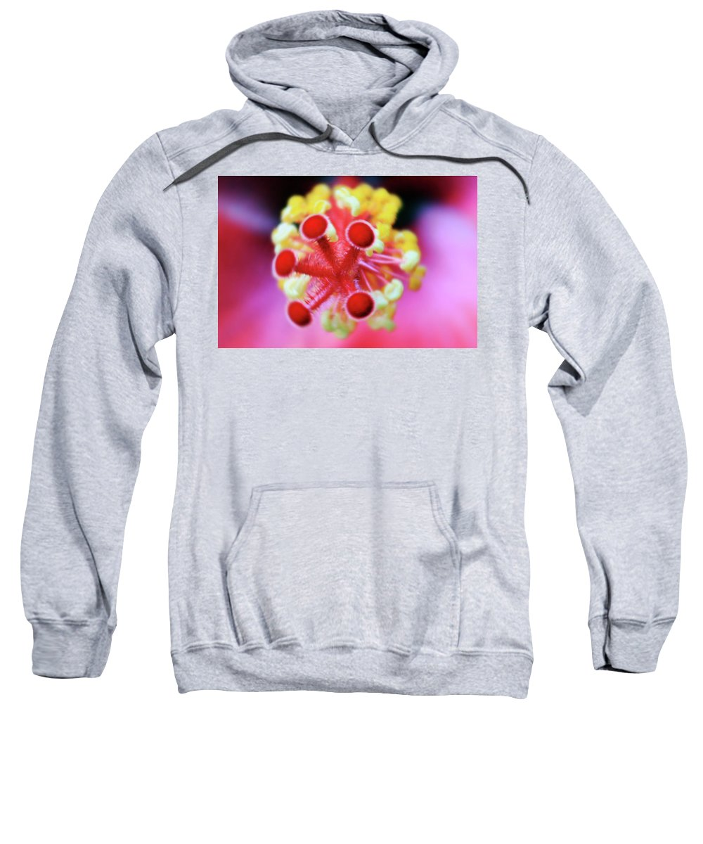 Roses Sweatshirt featuring the photograph Flower In Pink by Mark Ashkenazi
