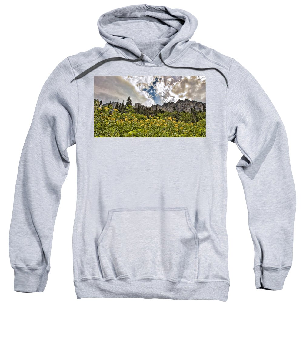 Flowers Sweatshirt featuring the photograph Flowers And Mountains And Sky...oh My by Shari Jardina
