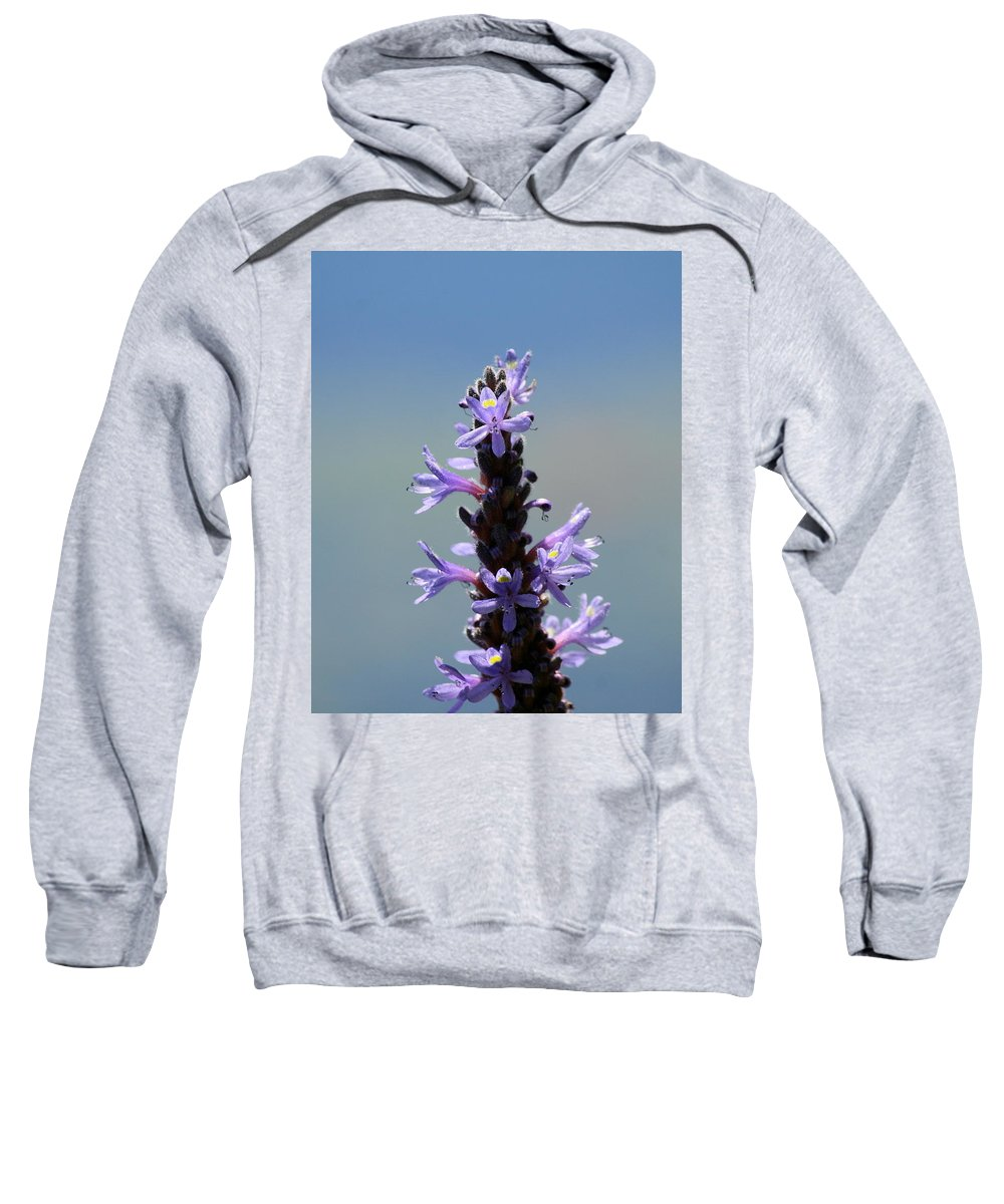 Flower Photography Sweatshirt featuring the photograph Flowers By The River by Neal Eslinger