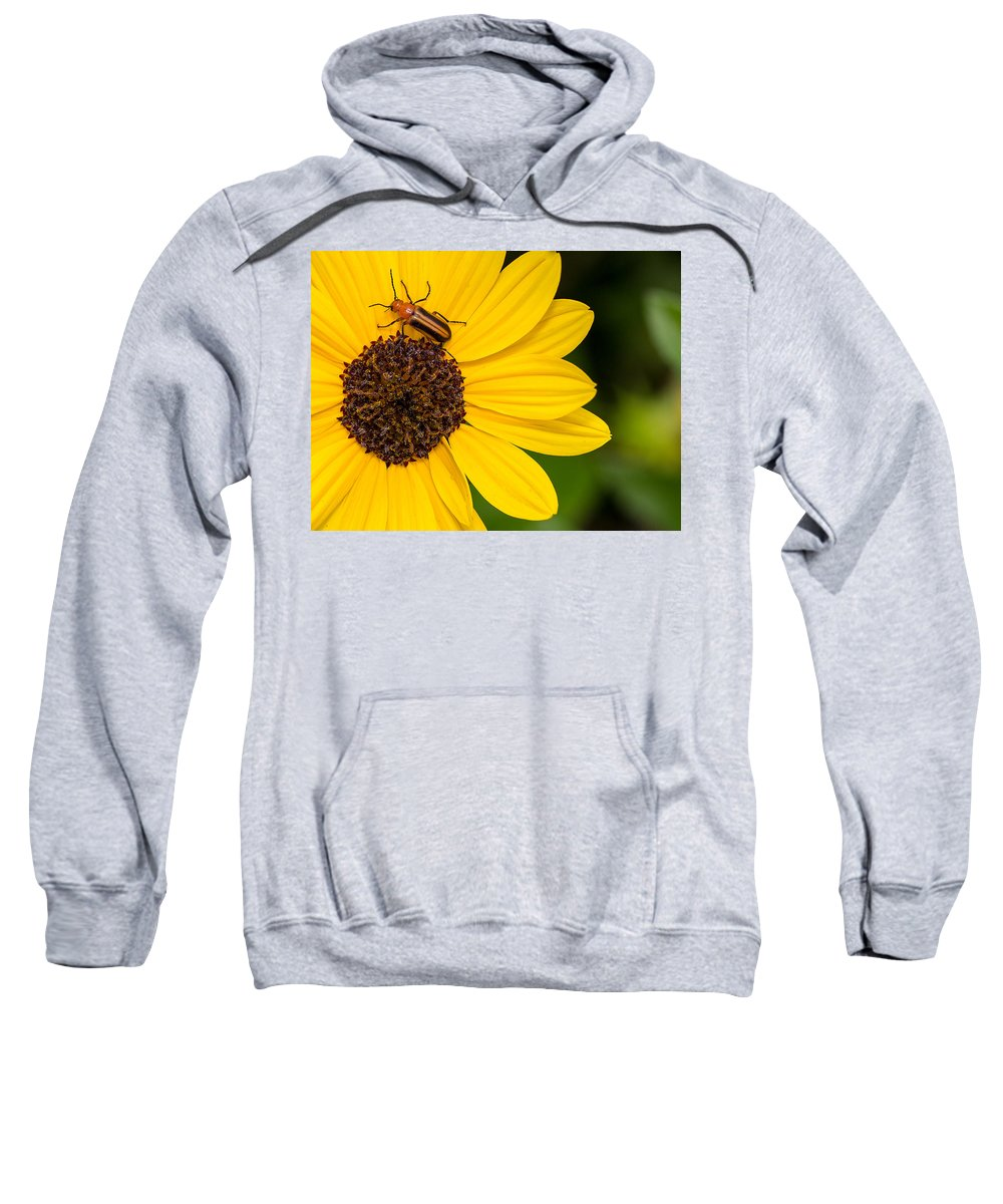 Flowers Sweatshirt featuring the photograph Flowers by Dennis Goodman