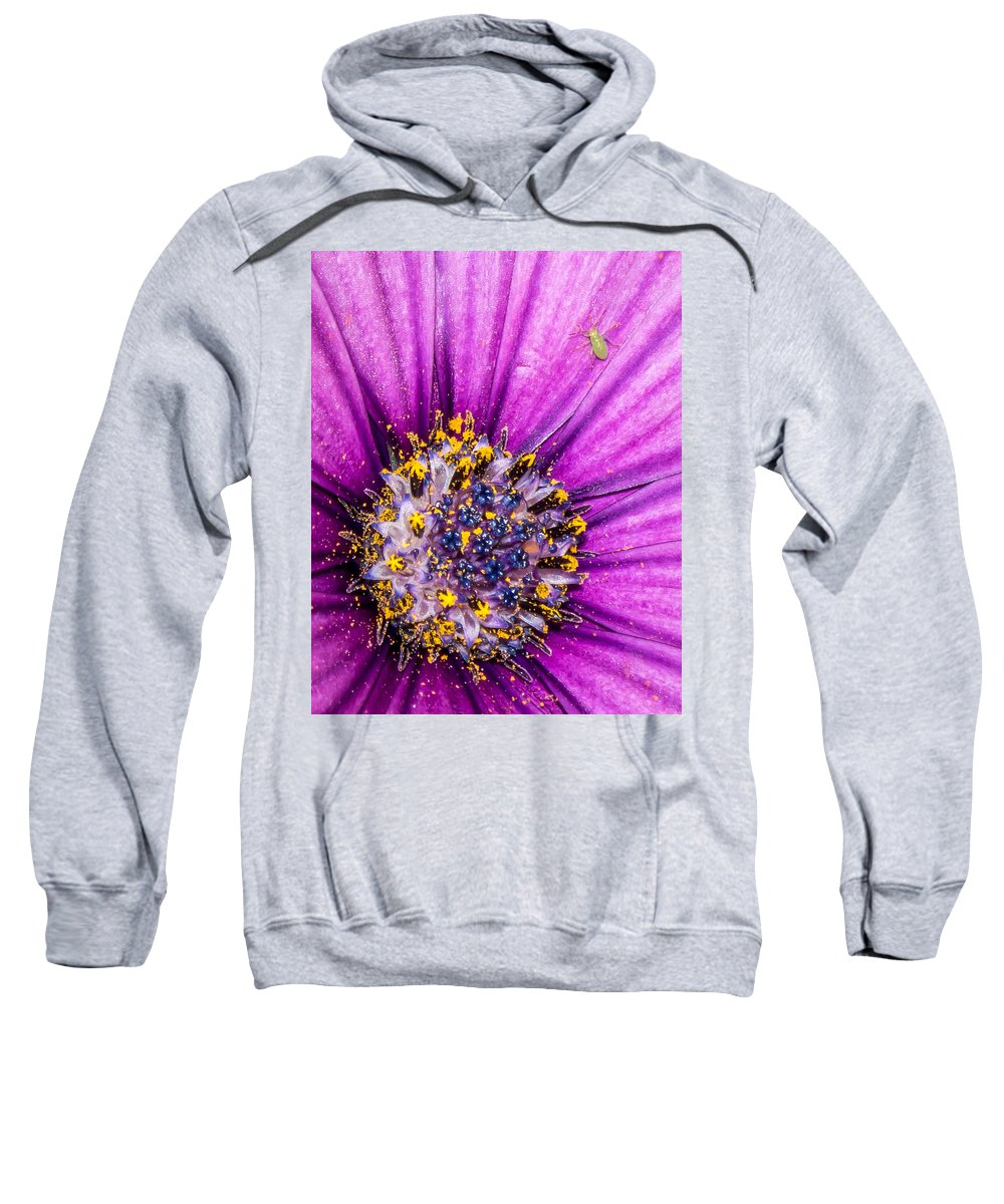 Flower Sweatshirt featuring the photograph Flowers Within A Flower by Ernesto Santos