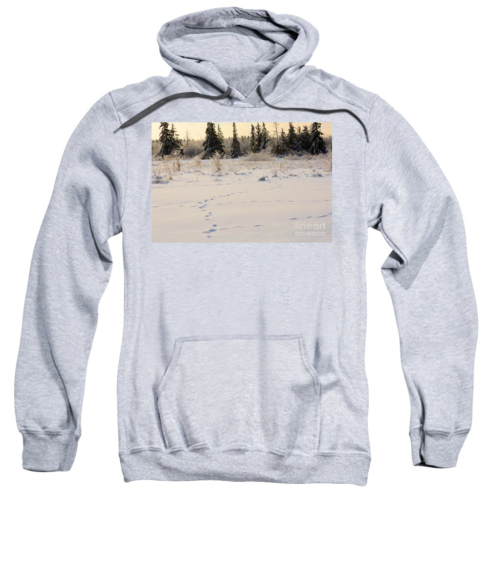 Footprints Sweatshirt featuring the photograph Footprints In Fresh Snow by Louise Heusinkveld