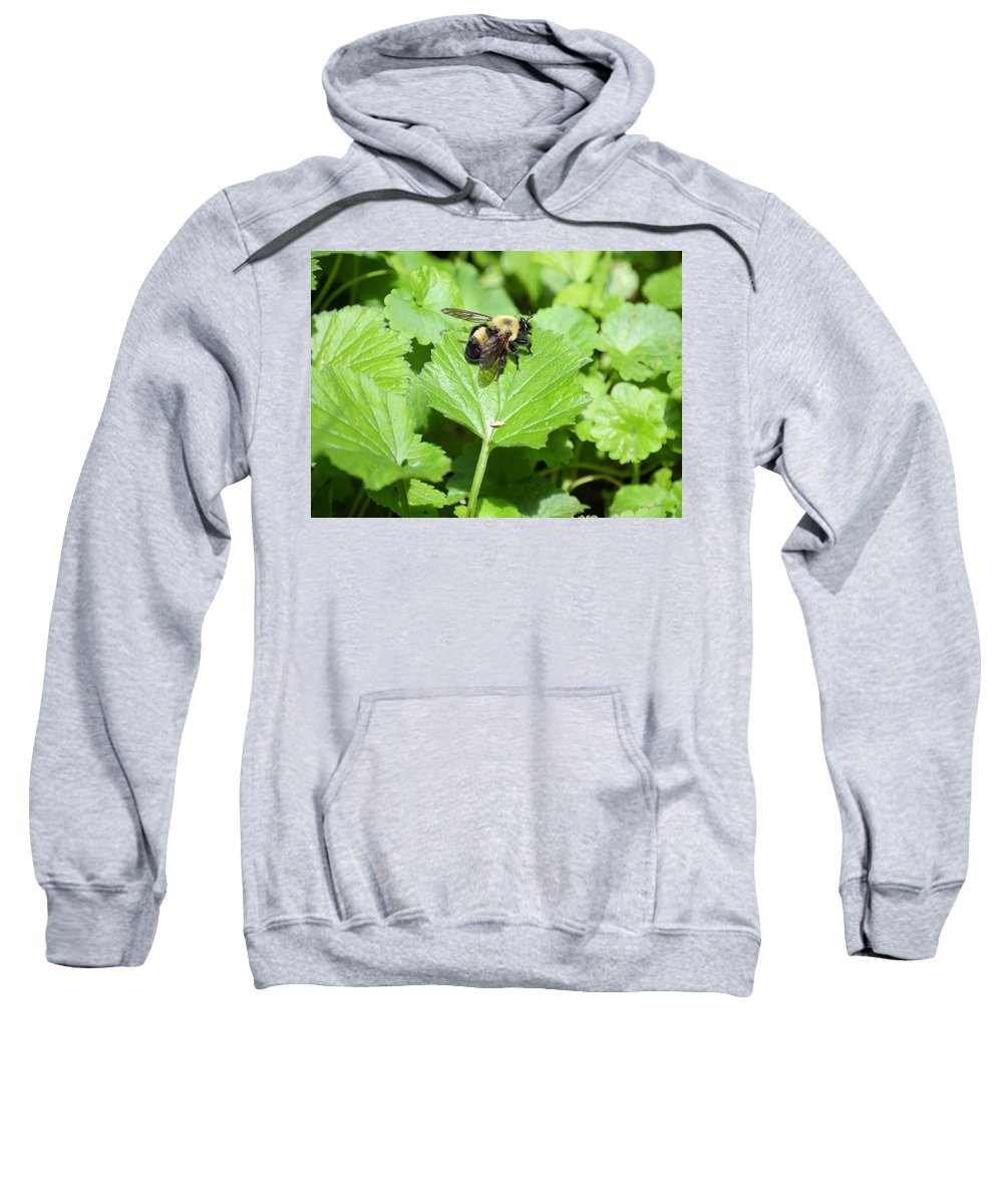 Bee Sweatshirt featuring the photograph Forest Bee 7260 by Bonfire Photography