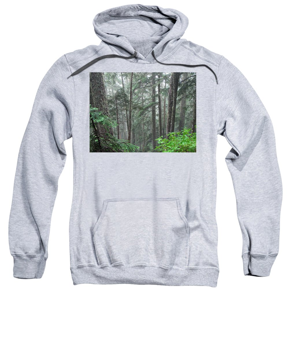 Trees Sweatshirt featuring the photograph Forest Bluff by Tikvah's Hope