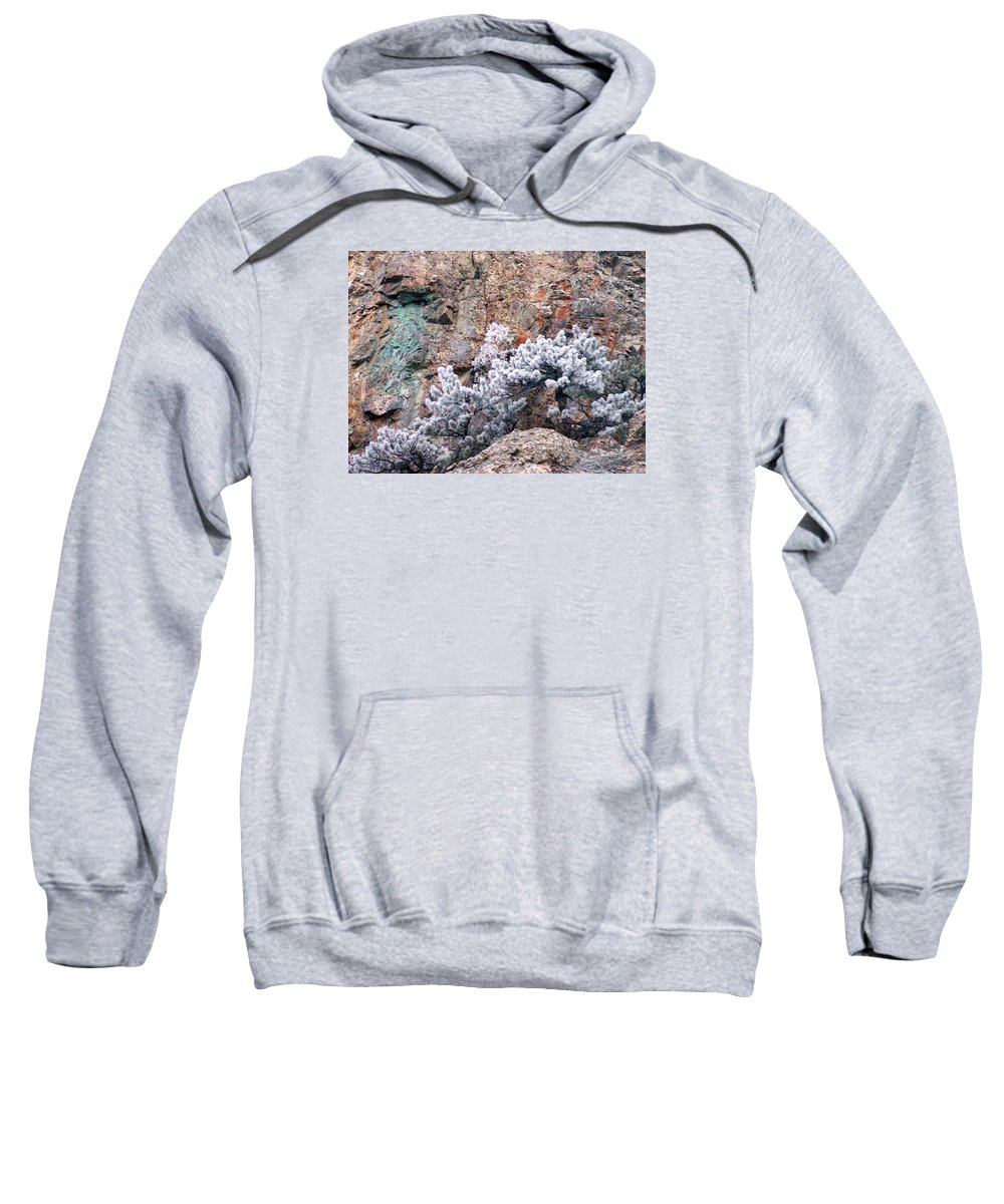 Cooper Rock Tree Frost Boulder Colorado Rock Mountains Winter Colorful Rocks Sweatshirt featuring the photograph Frosted Trees by George Tuffy