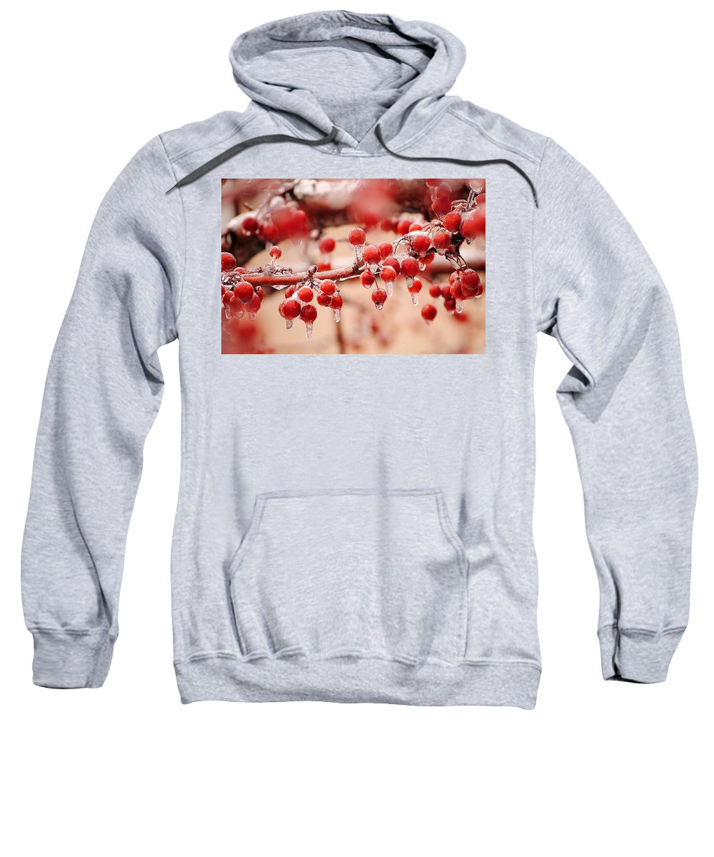 Cherries Sweatshirt featuring the photograph Frozen Berries by Frozen in Time Fine Art Photography