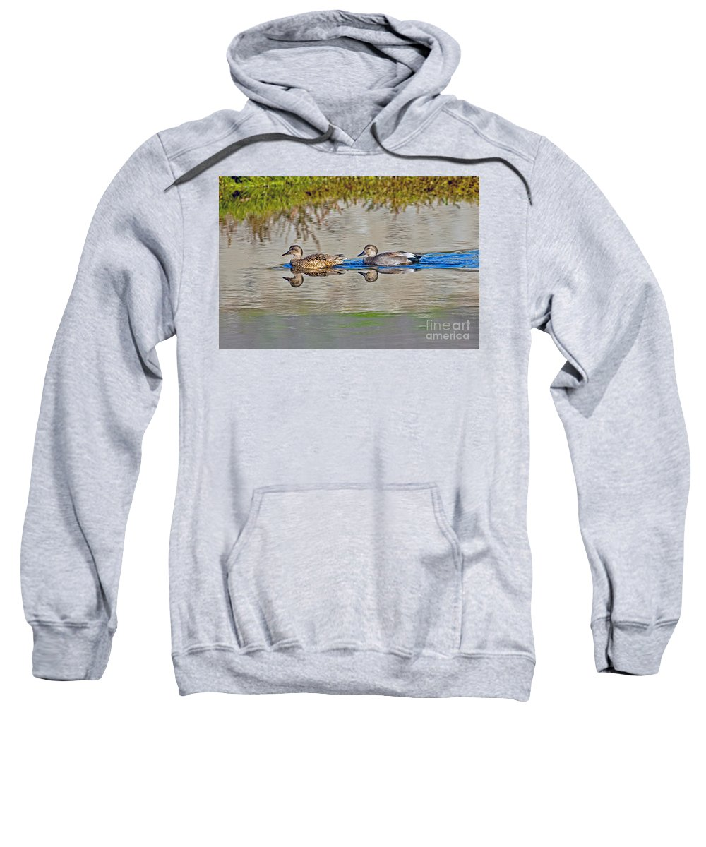 Animal Sweatshirt featuring the photograph Gadwall Pair Swimming Together by Anthony Mercieca