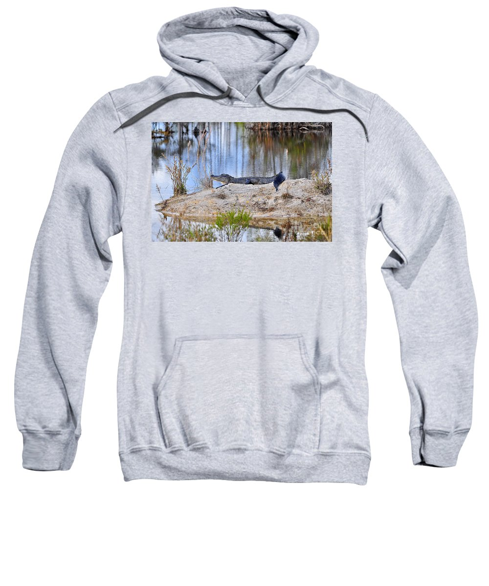 Alligator Sweatshirt featuring the photograph Gator On The Mound by Al Powell Photography USA