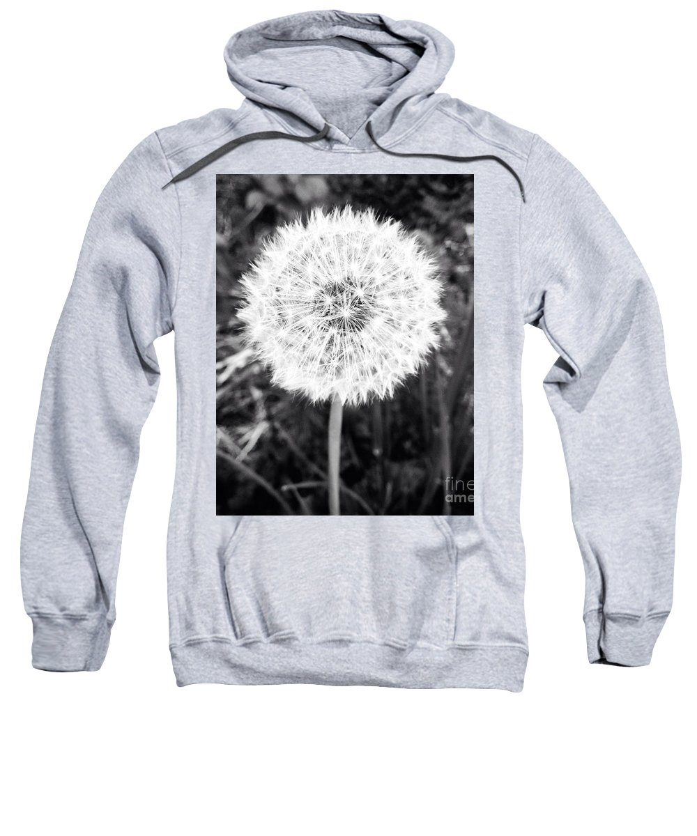 Tumbleweed Sweatshirt featuring the photograph Geodesicate by Vanessa Palomino
