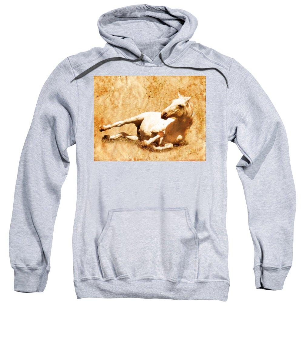 Wild Horses Sweatshirt featuring the photograph Gitty Up by Steve McKinzie
