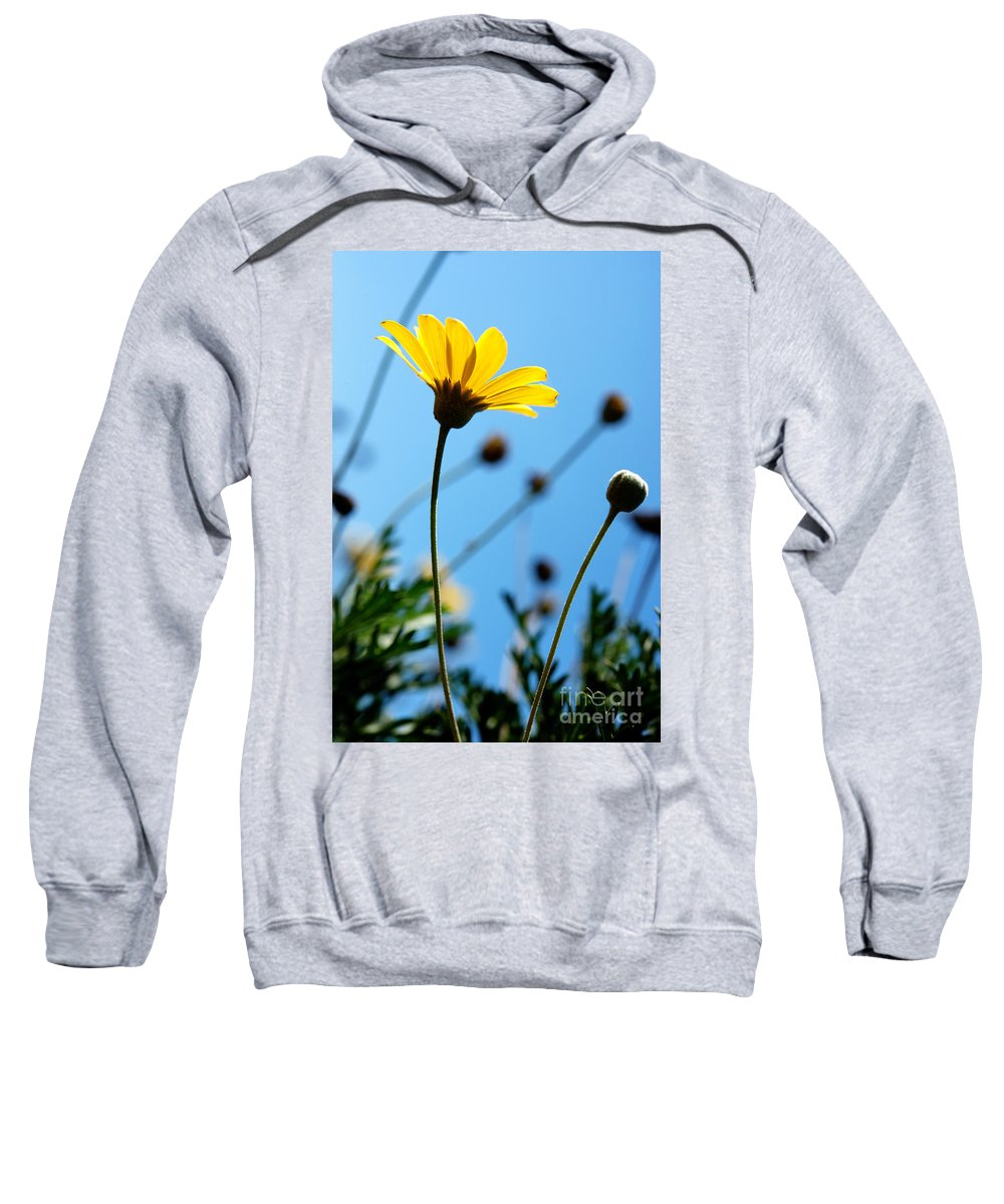 Nature Sweatshirt featuring the photograph Good Day by Yew Kwang