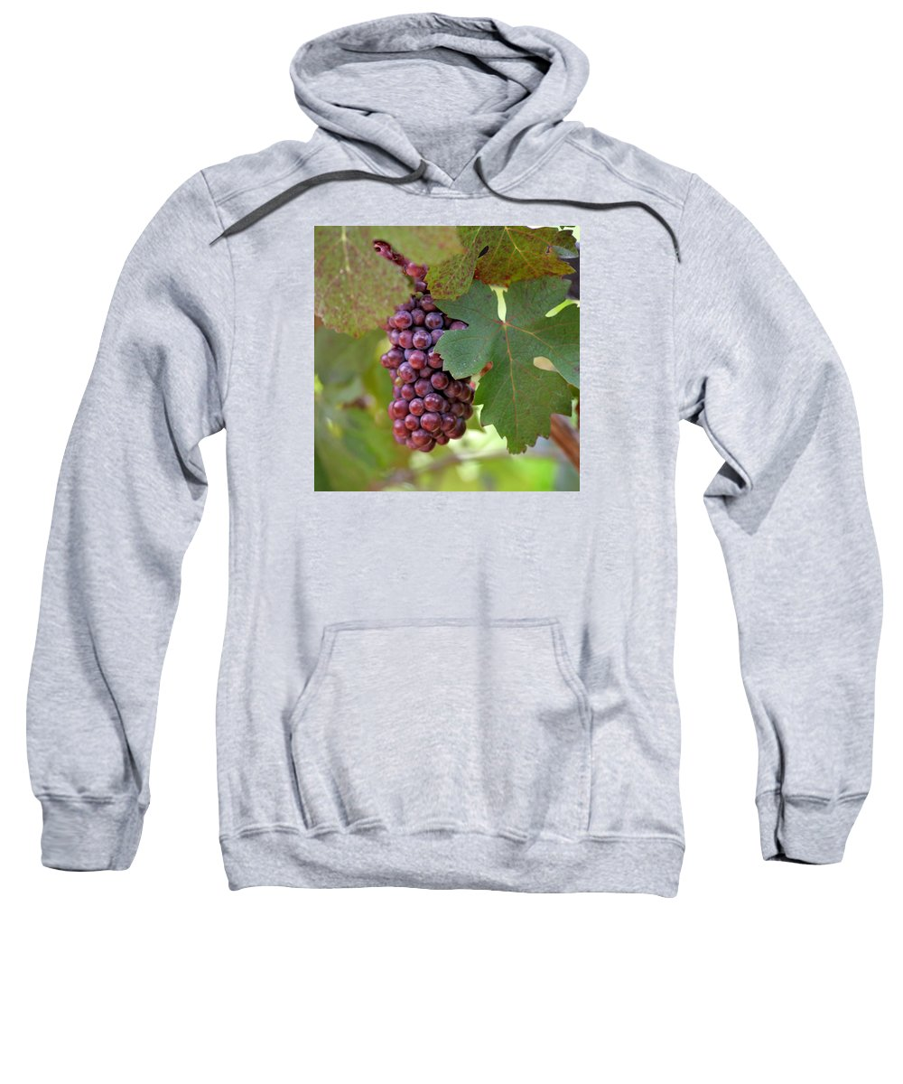 Grape Sweatshirt featuring the photograph Grape Bunch by Art Block Collections
