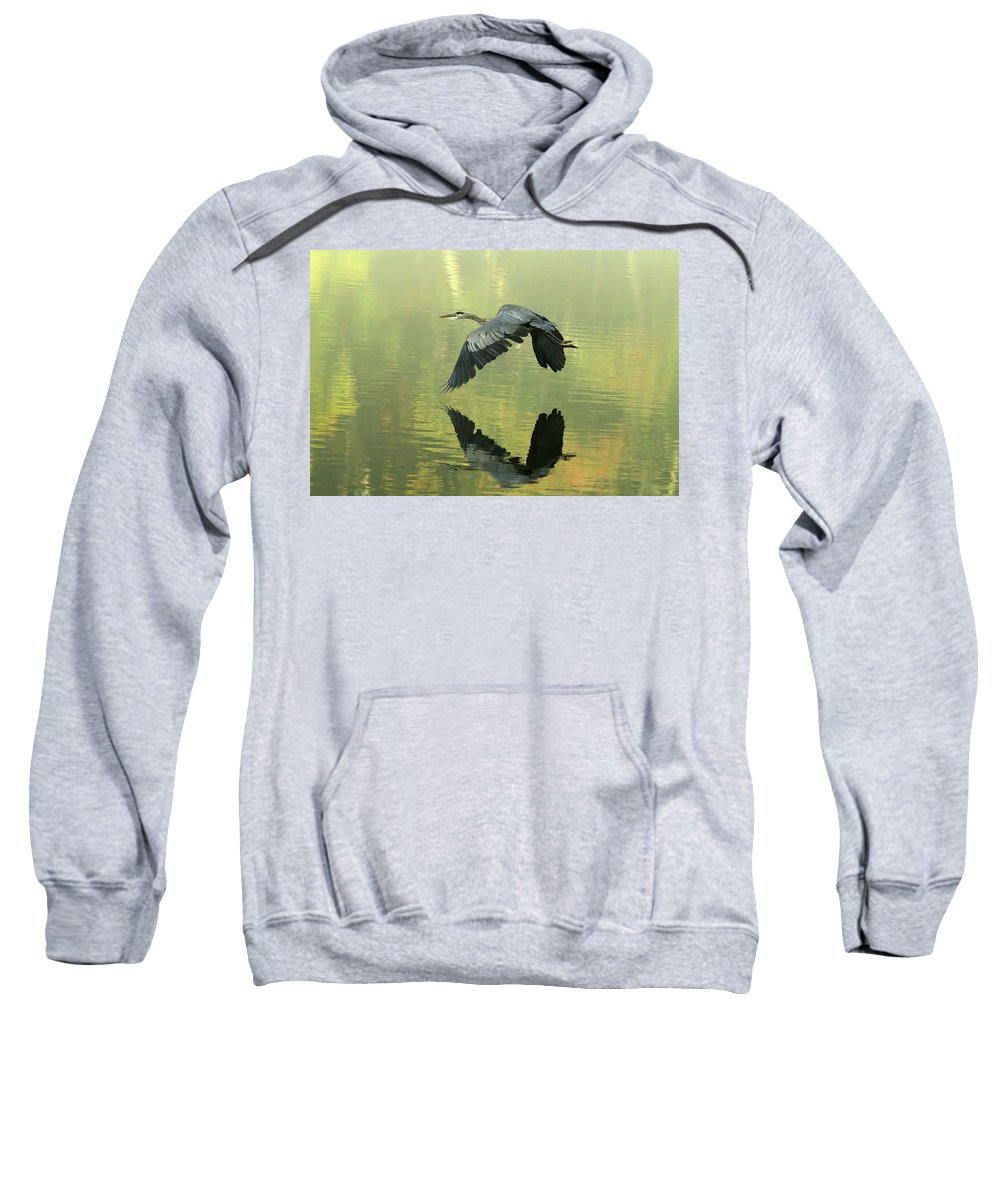 Blue Sweatshirt featuring the photograph Great Blue Fly-by by Douglas Stucky
