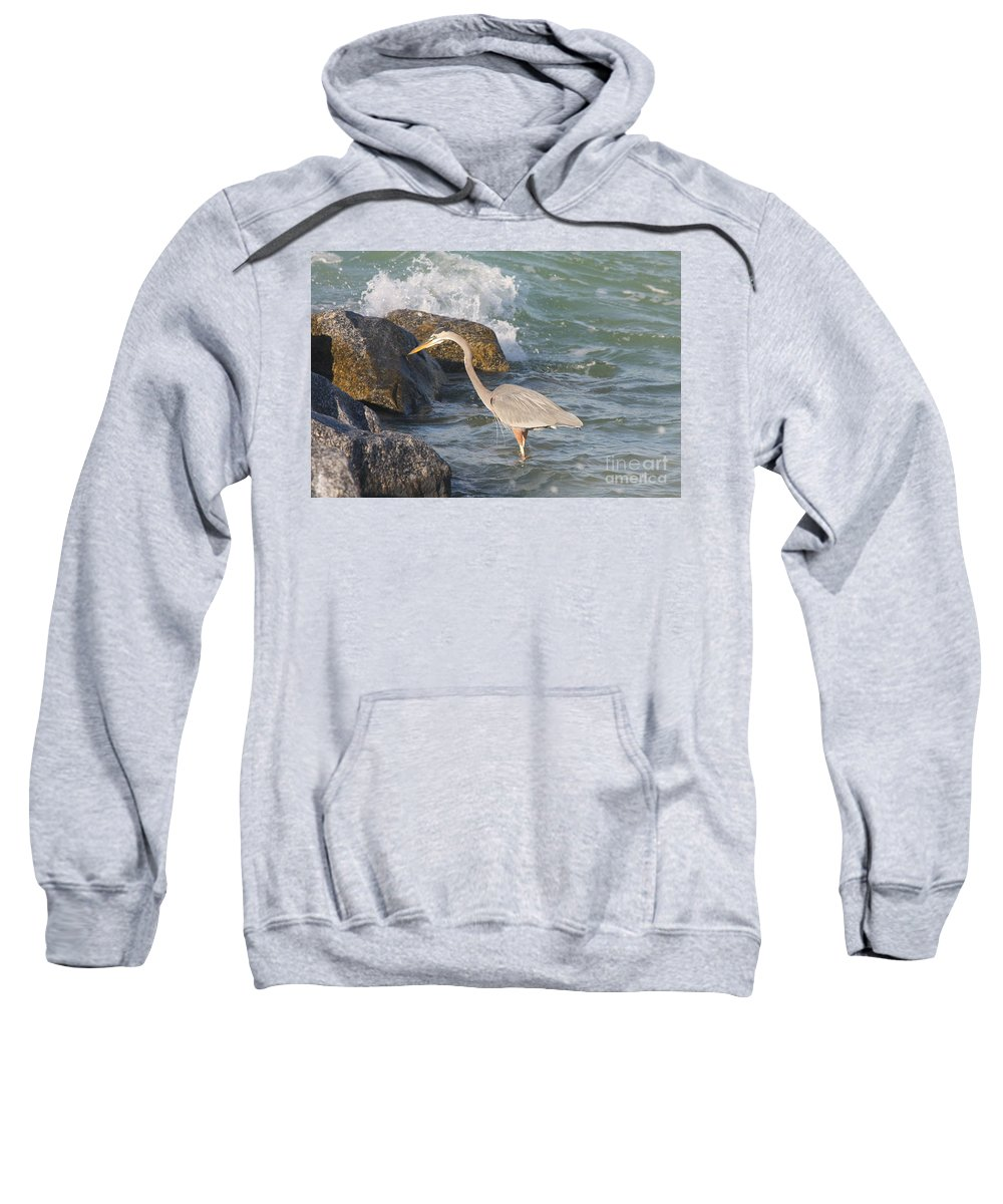 Heron Sweatshirt featuring the photograph Great Blue Heron On The Prey by Christiane Schulze Art And Photography