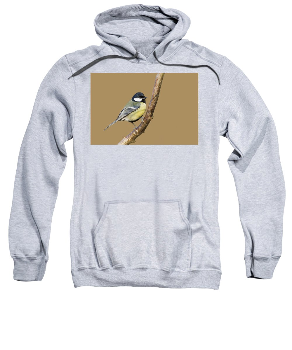 Animal Sweatshirt featuring the photograph Great Tit by Chris Smith