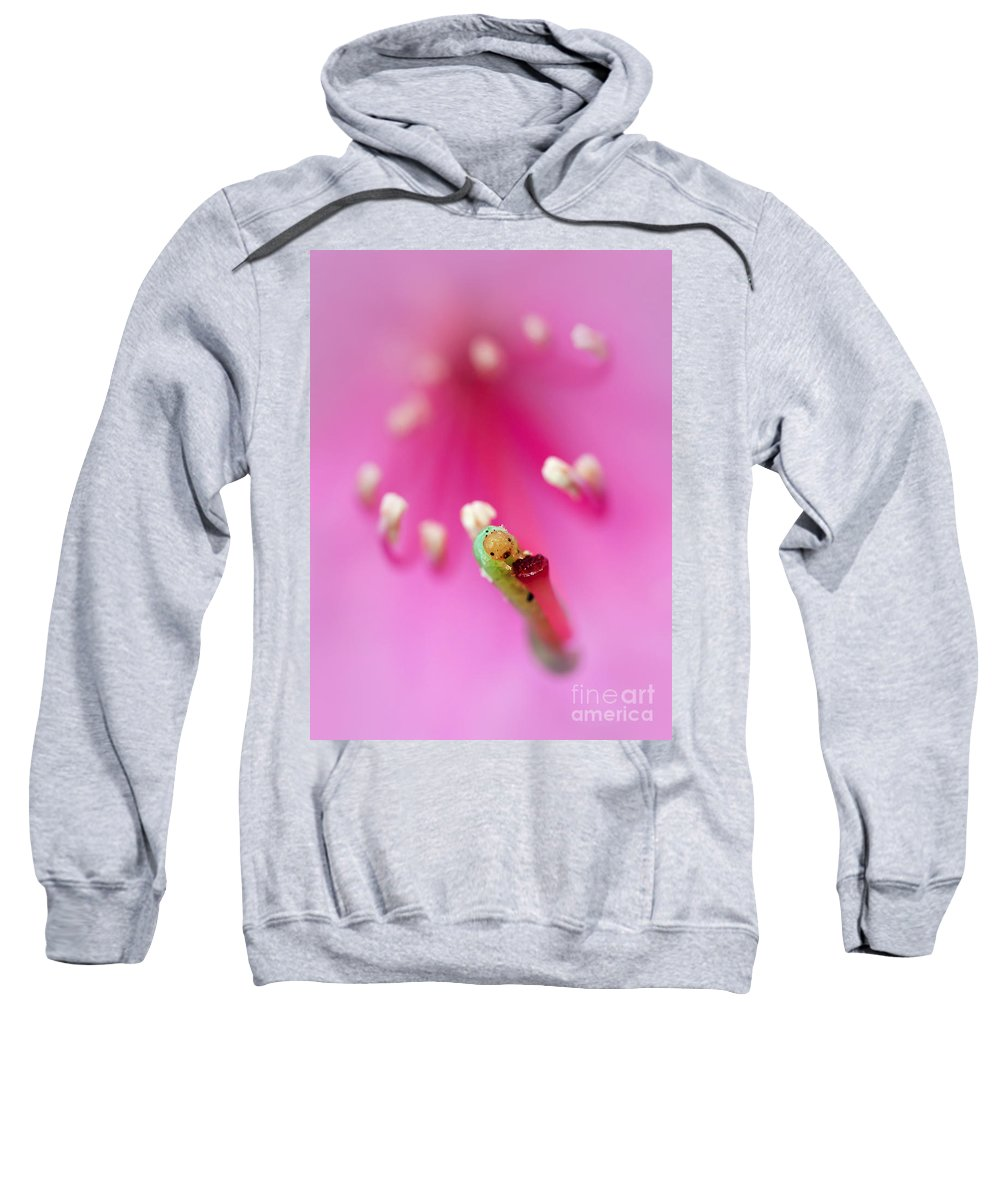 Flower Sweatshirt featuring the photograph Green Jelly On A Rhododendron by Jaroslaw Blaminsky