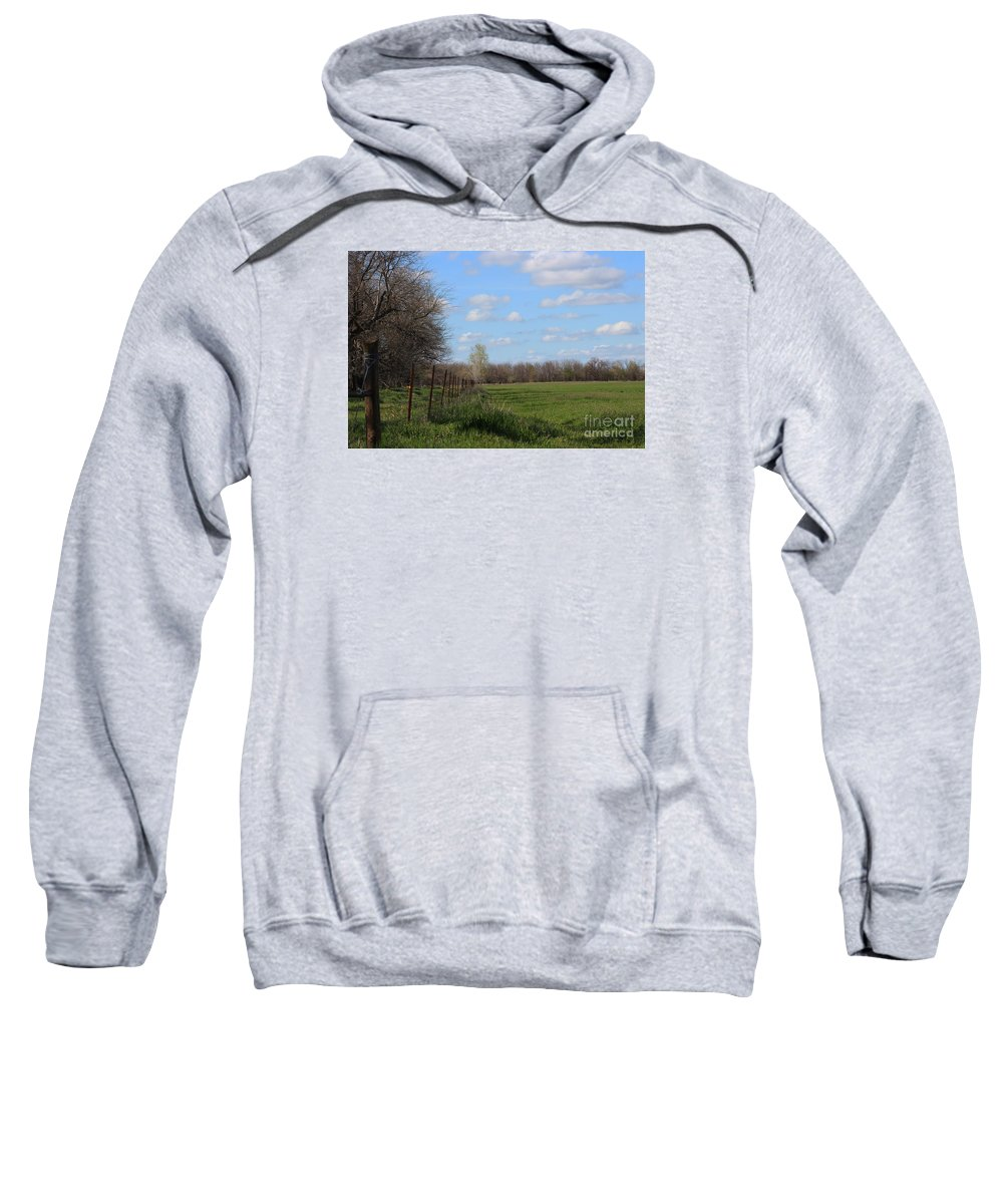 Wheat Sweatshirt featuring the photograph Green Wheat Field With Blue Sky by Robert D Brozek