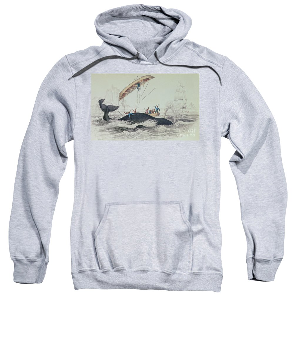 Boat; Capsized; Overturned; Upside Down; Ship; Sea; Iceberg; Harpoons; Arctic Sweatshirt featuring the drawing Greenland Whale Book Illustration Engraved By William Home Lizars by James Stewart