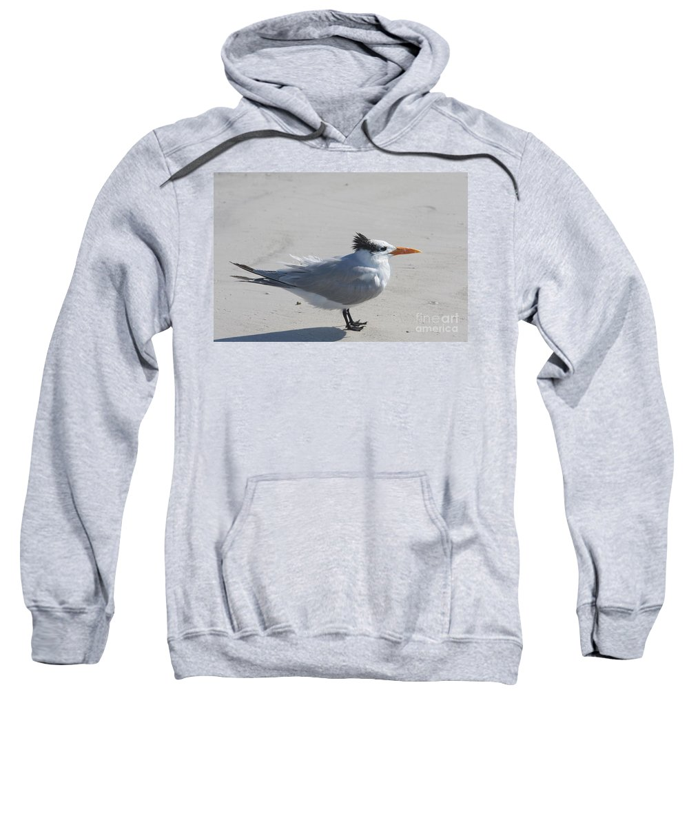 Tern Sweatshirt featuring the photograph Tern by Christiane Schulze Art And Photography